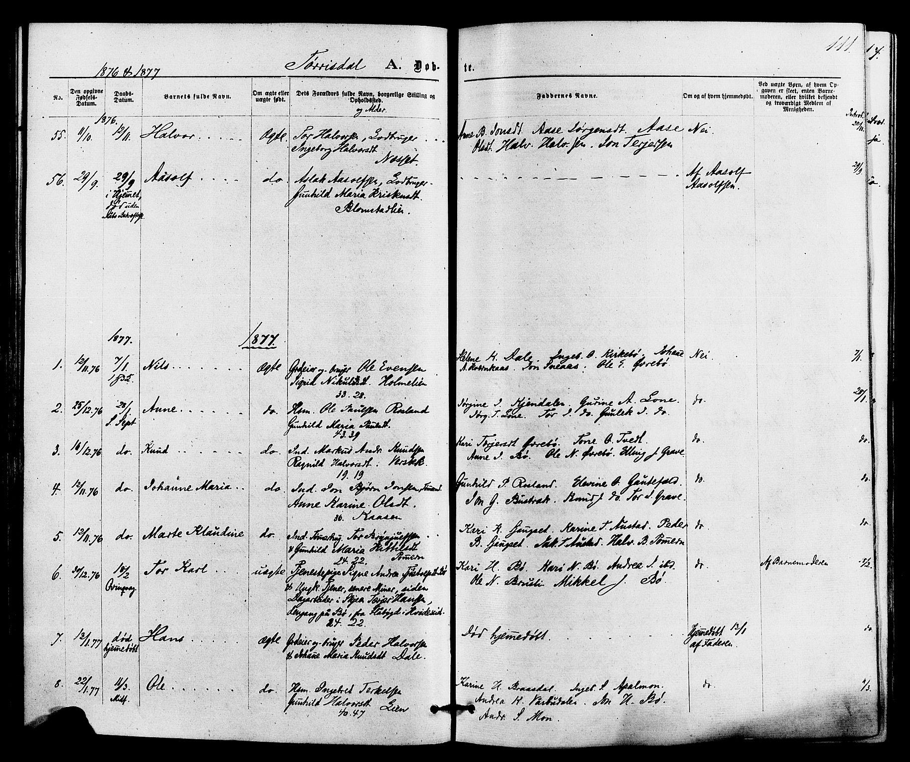 SAKO, Drangedal kirkebøker, F/Fa/L0009: Ministerialbok nr. 9 /2, 1872-1884, s. 111