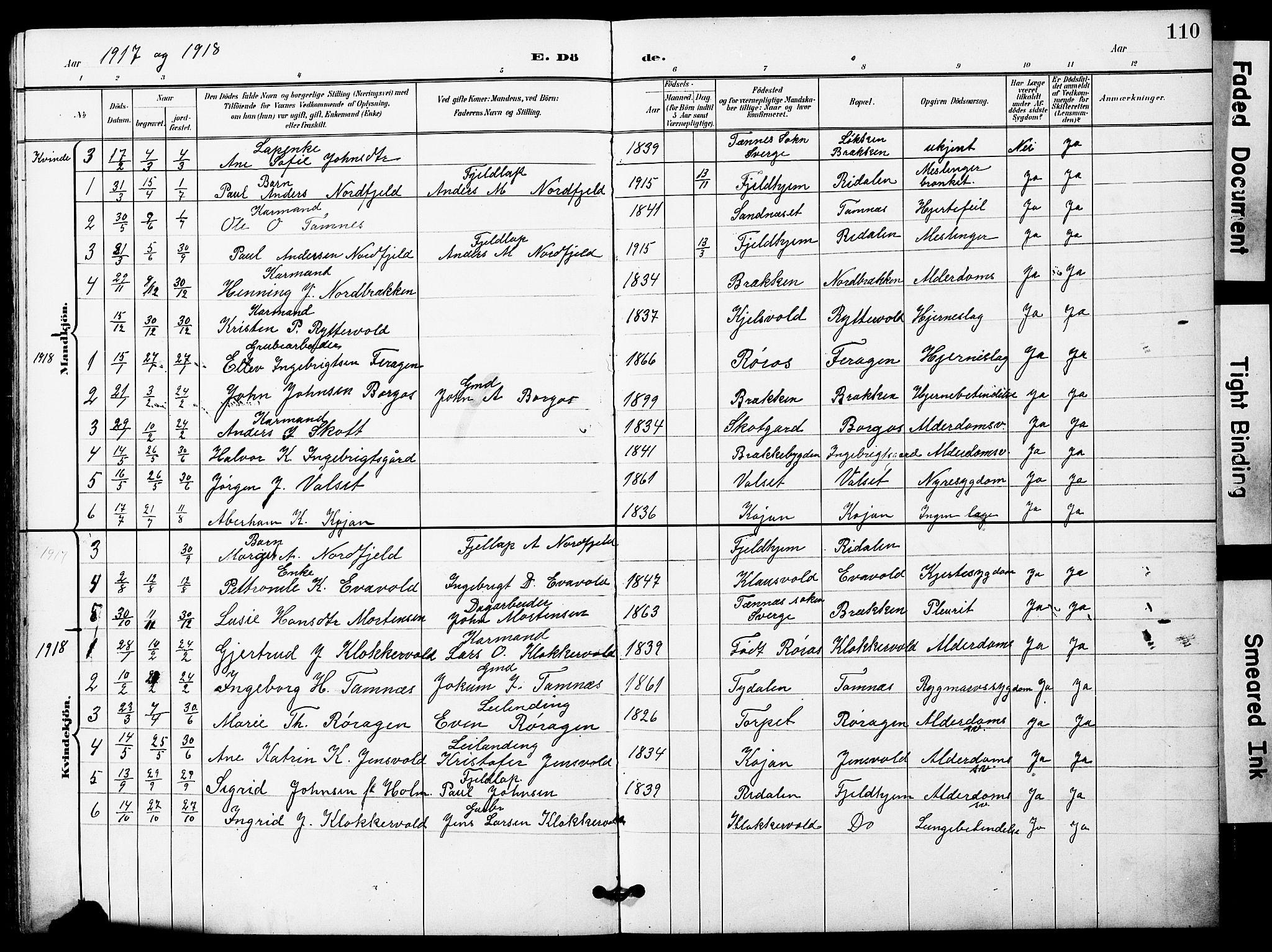 SAT, Ministerialprotokoller, klokkerbøker og fødselsregistre - Sør-Trøndelag, 683/L0950: Klokkerbok nr. 683C02, 1897-1918, s. 110