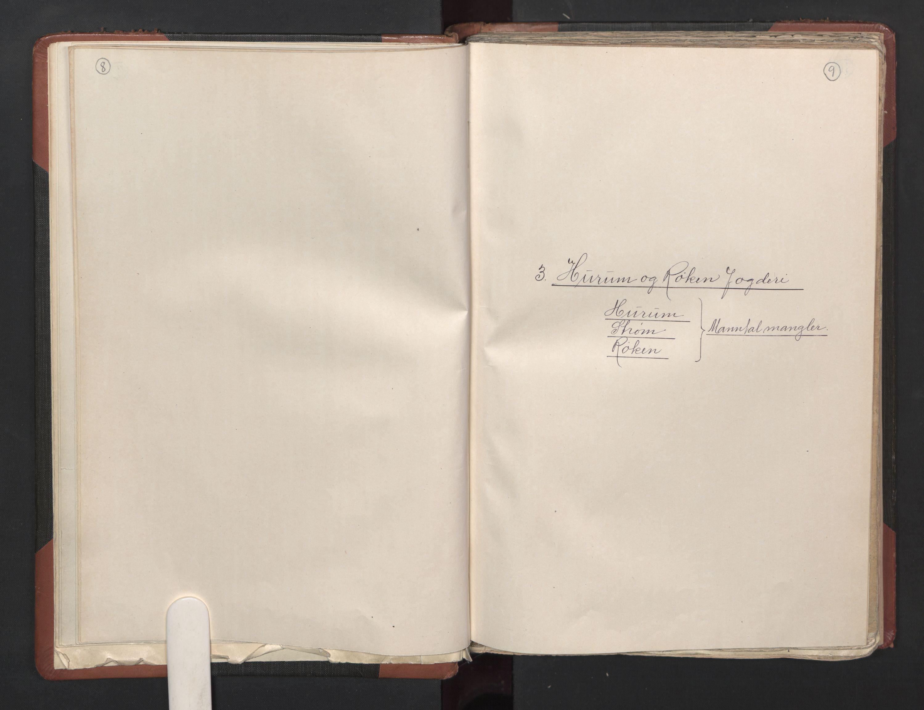 RA, Fogdenes og sorenskrivernes manntall 1664-1666, nr. 5: Fogderier (len og skipreider) i nåværende Buskerud fylke og Vestfold fylke, 1664, s. 8-9