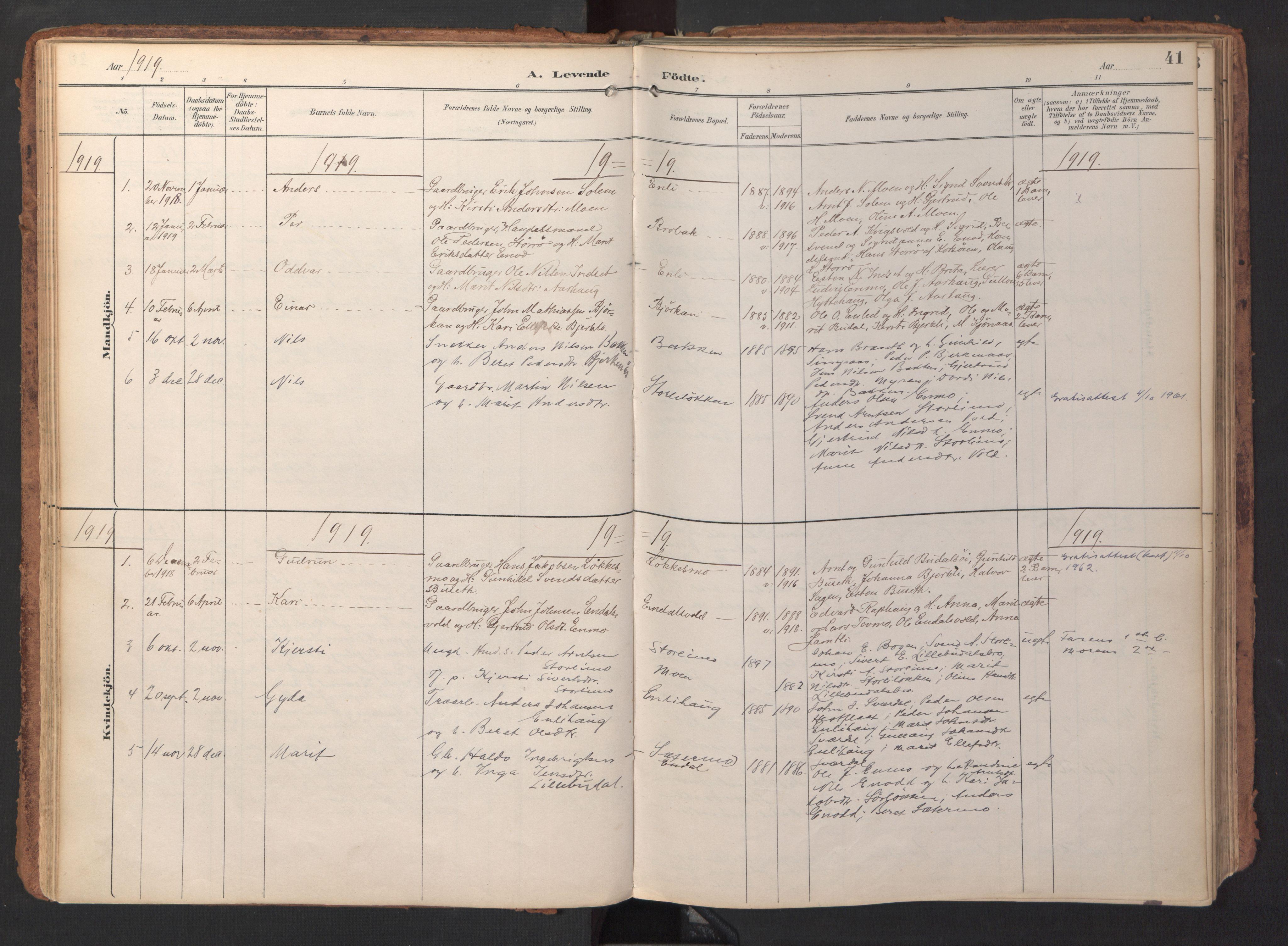 SAT, Ministerialprotokoller, klokkerbøker og fødselsregistre - Sør-Trøndelag, 690/L1050: Ministerialbok nr. 690A01, 1889-1929, s. 41