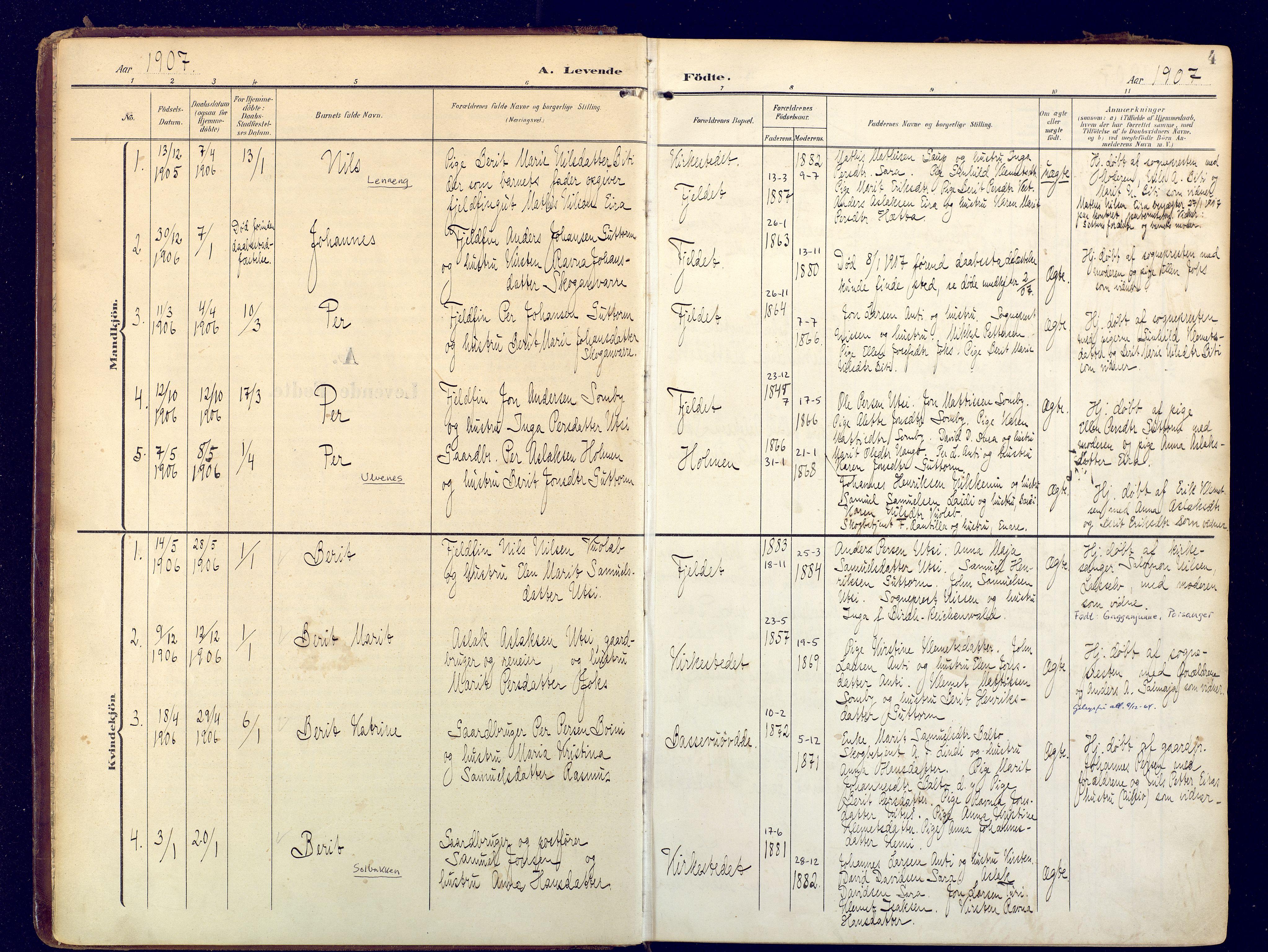 SATØ, Karasjok sokneprestkontor, H/Ha: Ministerialbok nr. 3, 1907-1926, s. 4