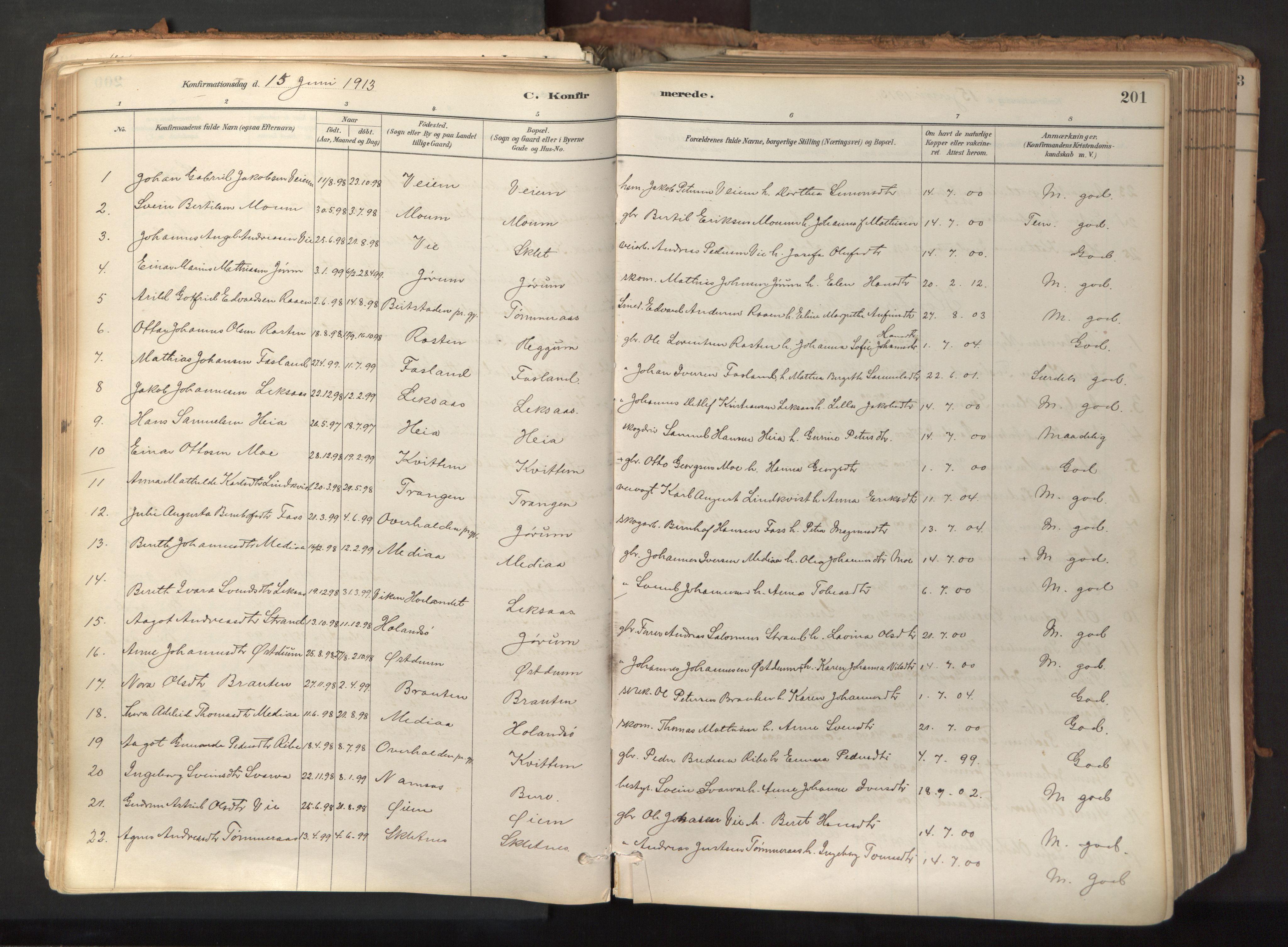 SAT, Ministerialprotokoller, klokkerbøker og fødselsregistre - Nord-Trøndelag, 758/L0519: Ministerialbok nr. 758A04, 1880-1926, s. 201