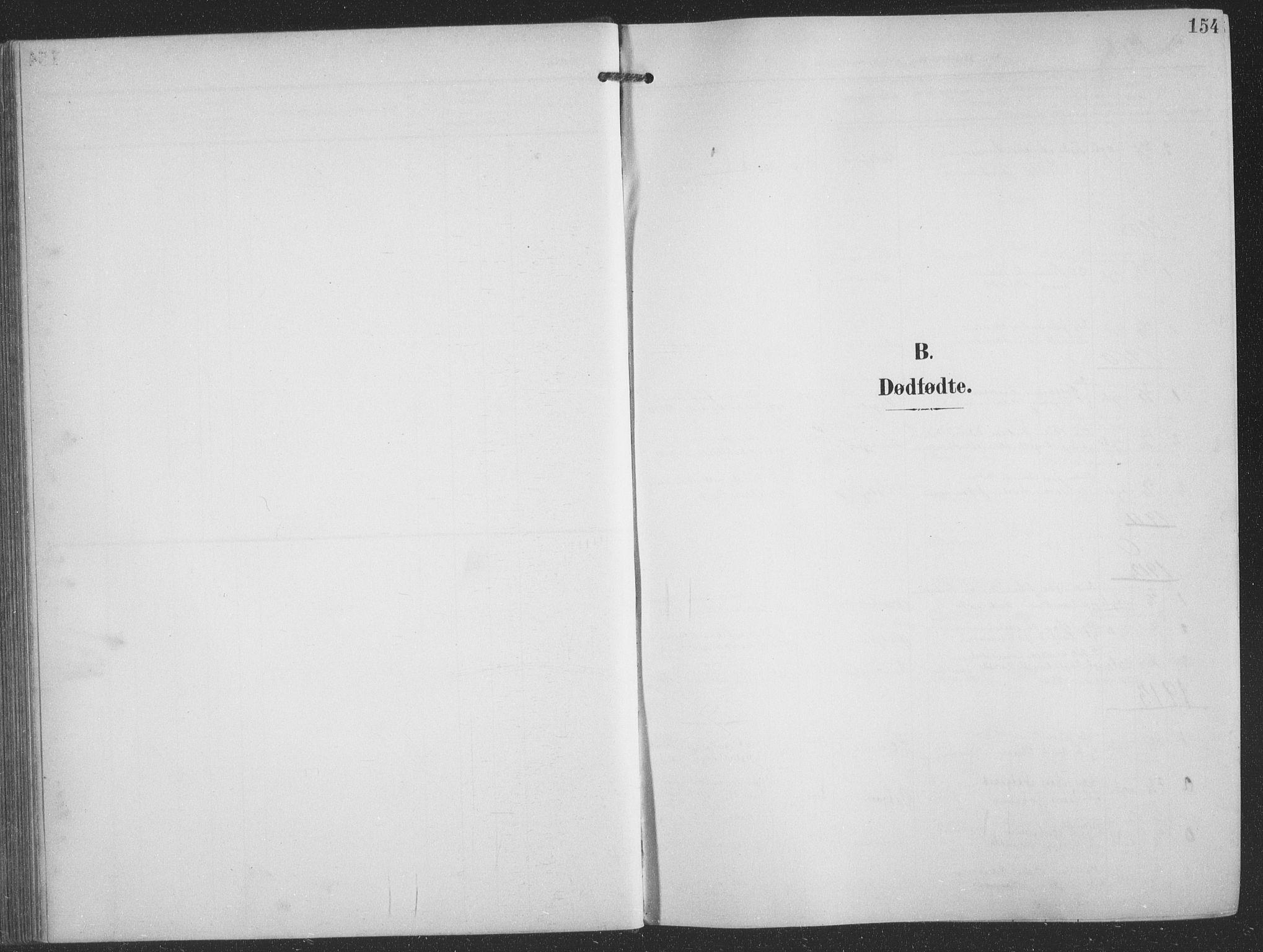 SATØ, Balsfjord sokneprestembete, G/Ga/L0009klokker: Klokkerbok nr. 9, 1906-1920, s. 154