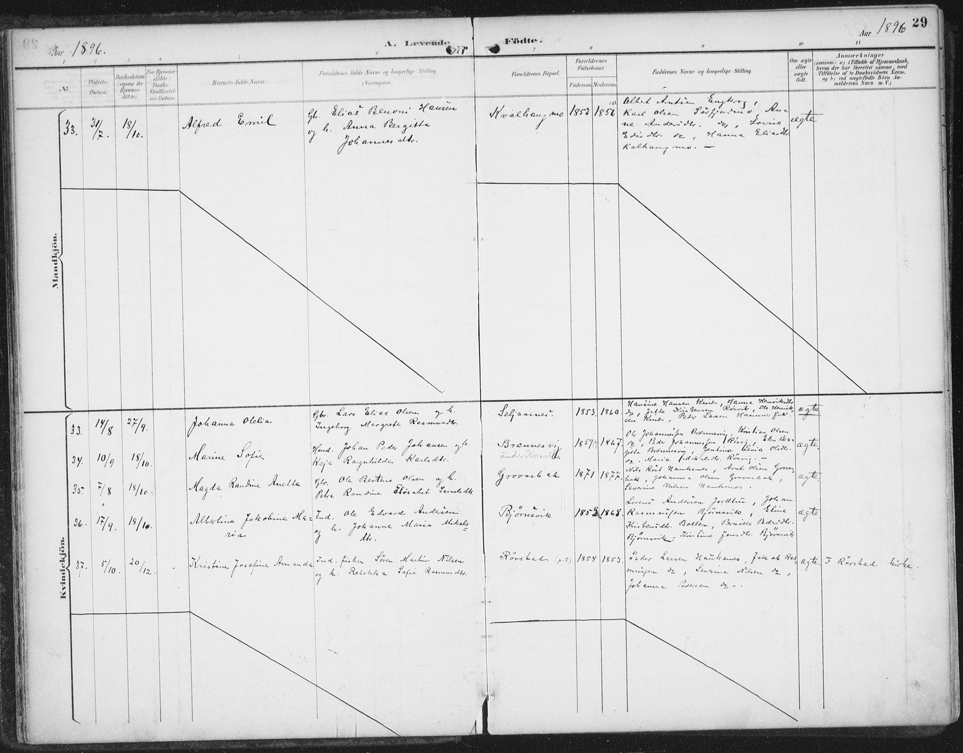 SAT, Ministerialprotokoller, klokkerbøker og fødselsregistre - Nordland, 854/L0779: Ministerialbok nr. 854A02, 1892-1909, s. 29