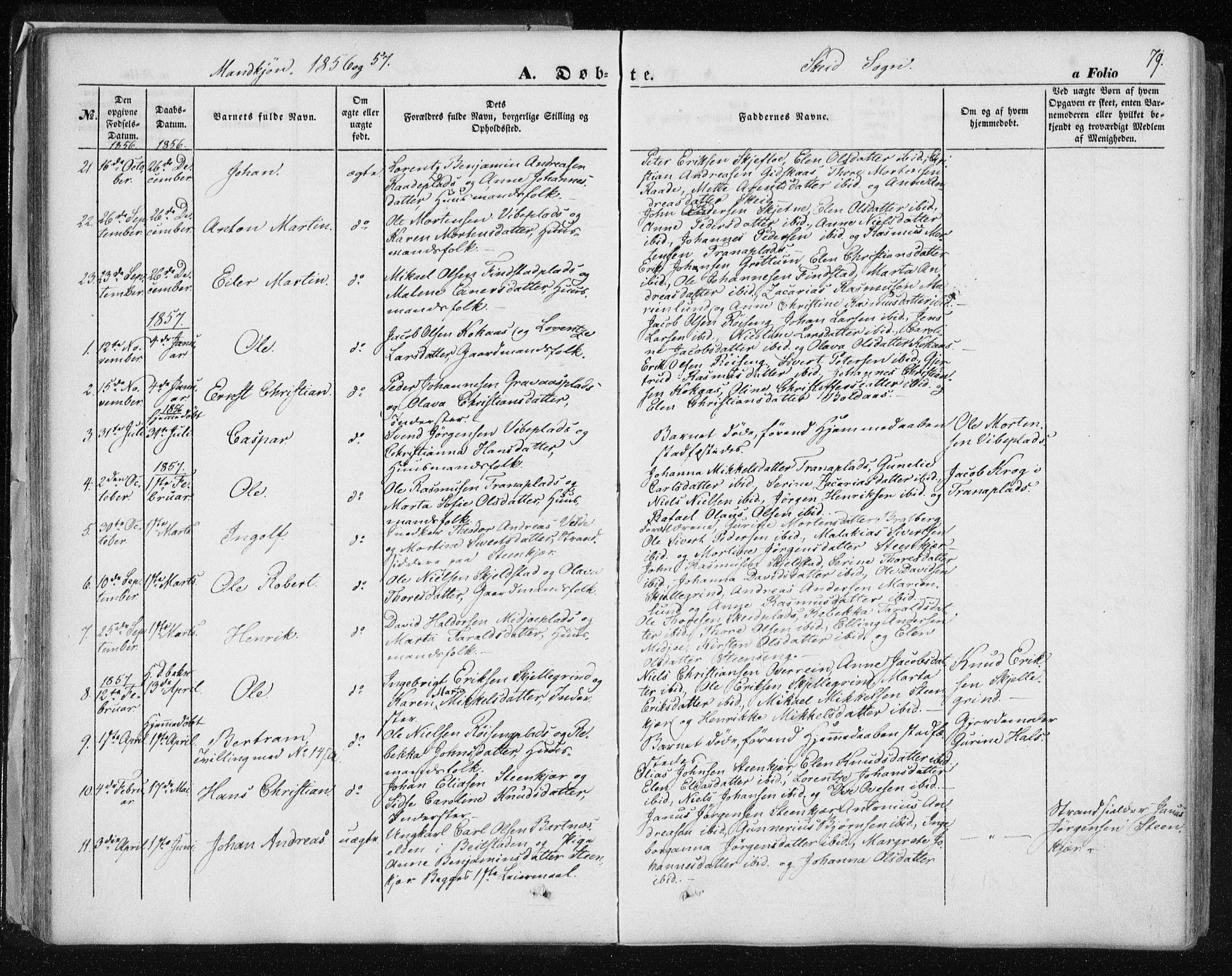 SAT, Ministerialprotokoller, klokkerbøker og fødselsregistre - Nord-Trøndelag, 735/L0342: Ministerialbok nr. 735A07 /2, 1849-1862, s. 79