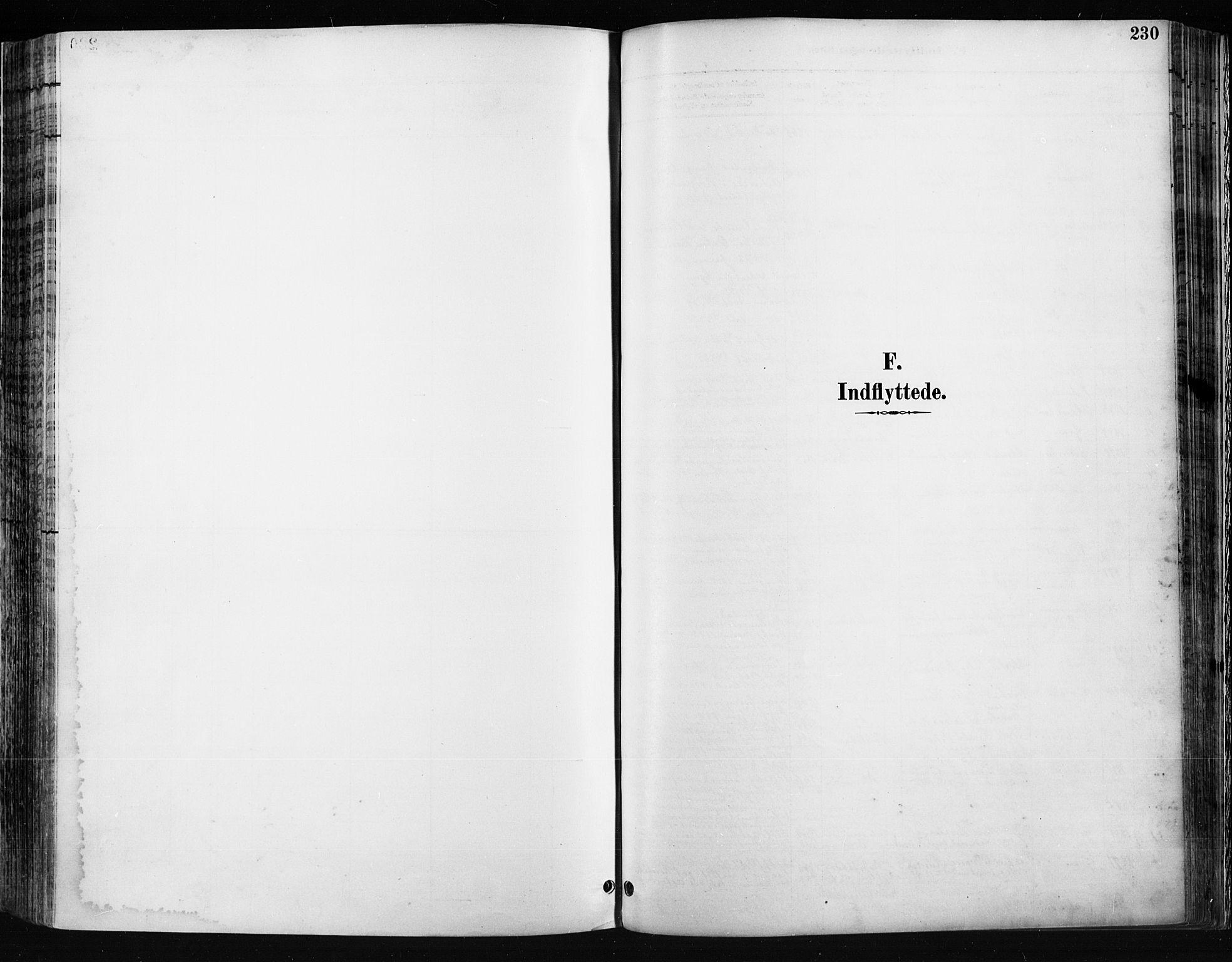 SAH, Jevnaker prestekontor, Ministerialbok nr. 9, 1891-1901, s. 230