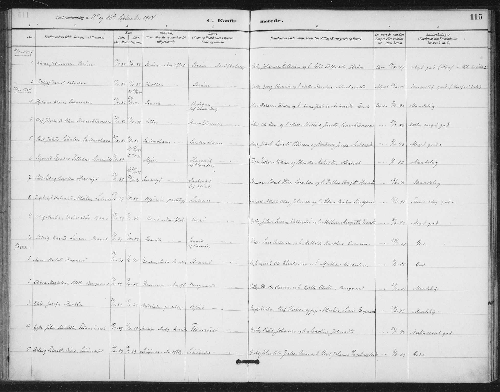 SAT, Ministerialprotokoller, klokkerbøker og fødselsregistre - Nord-Trøndelag, 772/L0603: Ministerialbok nr. 772A01, 1885-1912, s. 115