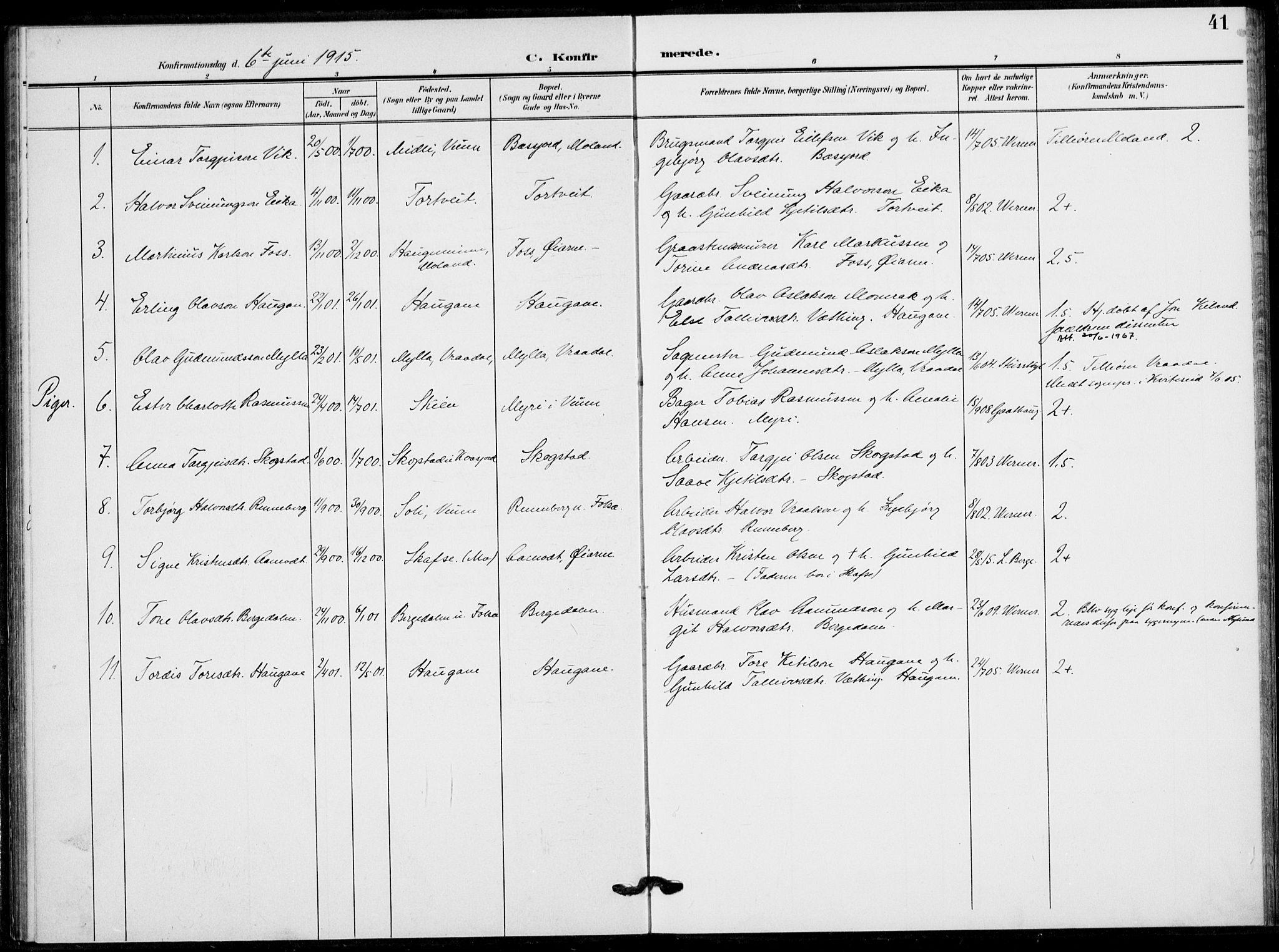 SAKO, Fyresdal kirkebøker, F/Fb/L0004: Ministerialbok nr. II 4, 1903-1920, s. 41