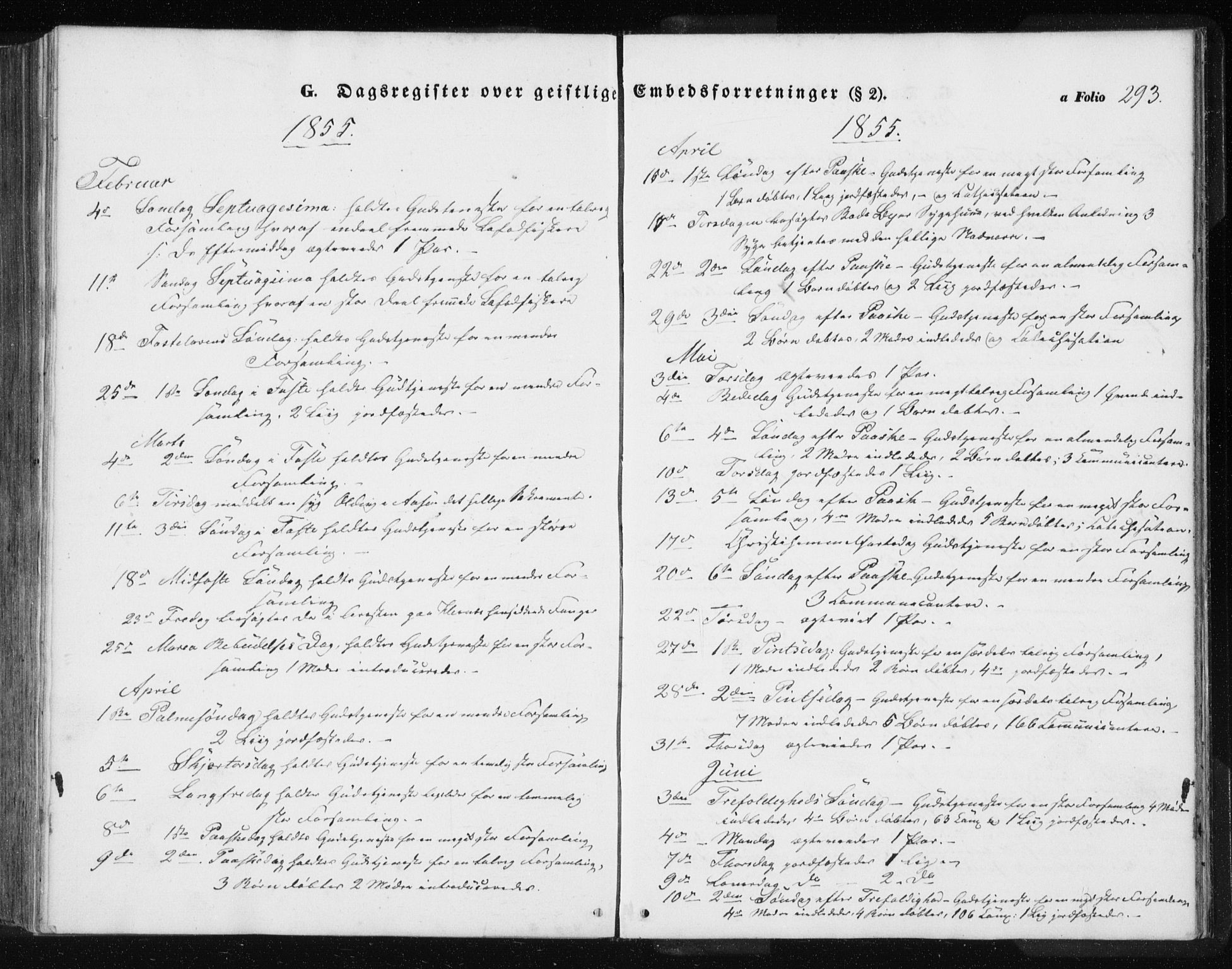 SAT, Ministerialprotokoller, klokkerbøker og fødselsregistre - Nordland, 801/L0028: Klokkerbok nr. 801C03, 1855-1867, s. 293
