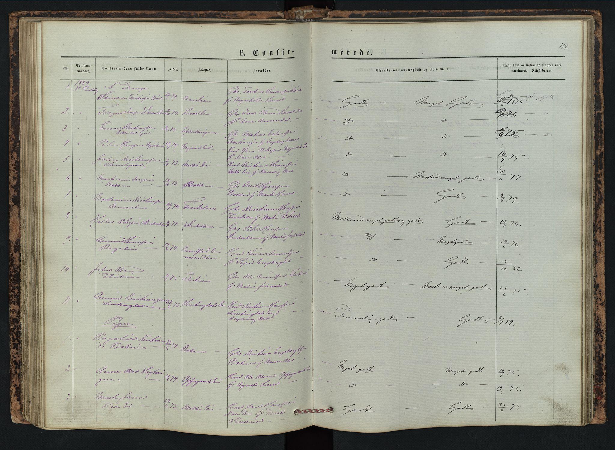 SAH, Vestre Gausdal prestekontor, Klokkerbok nr. 2, 1874-1897, s. 114