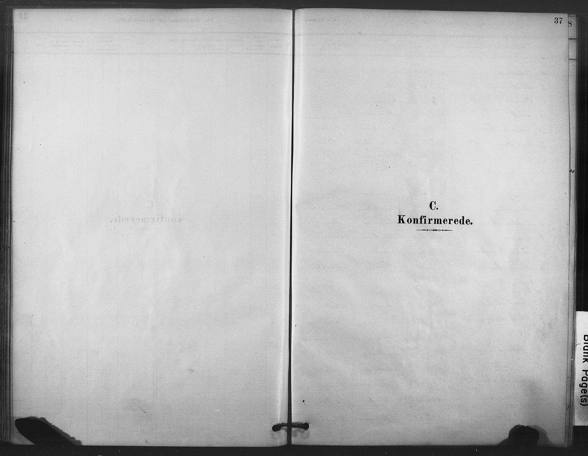SAT, Ministerialprotokoller, klokkerbøker og fødselsregistre - Nord-Trøndelag, 719/L0178: Ministerialbok nr. 719A01, 1878-1900, s. 37