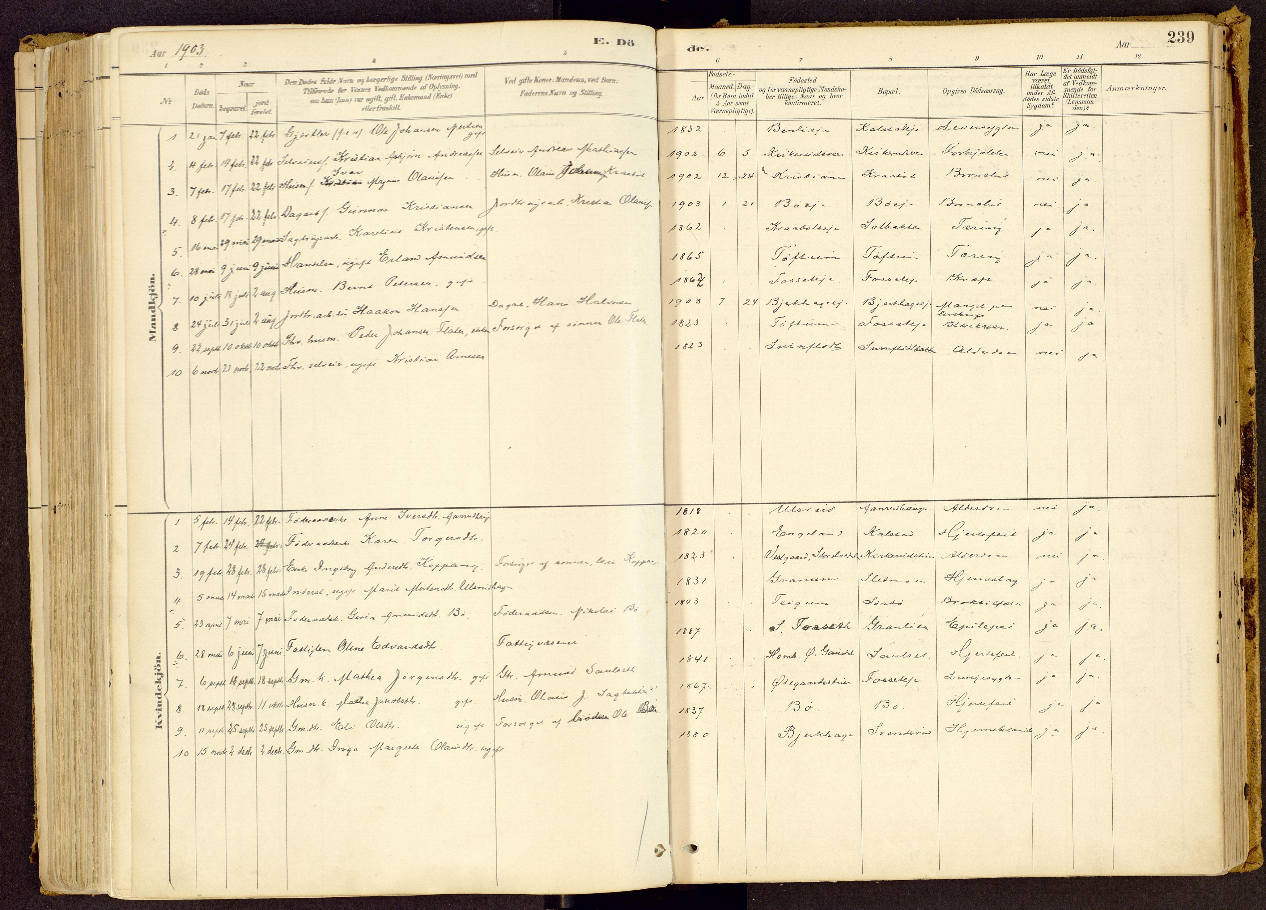 SAH, Vestre Gausdal prestekontor, Ministerialbok nr. 1, 1887-1914, s. 239