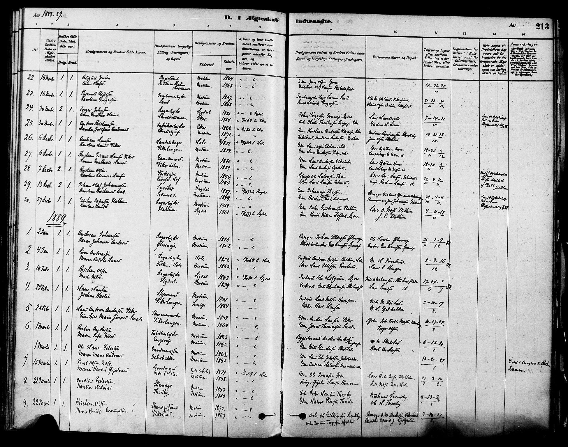SAKO, Modum kirkebøker, F/Fa/L0011: Ministerialbok nr. 11, 1877-1889, s. 213