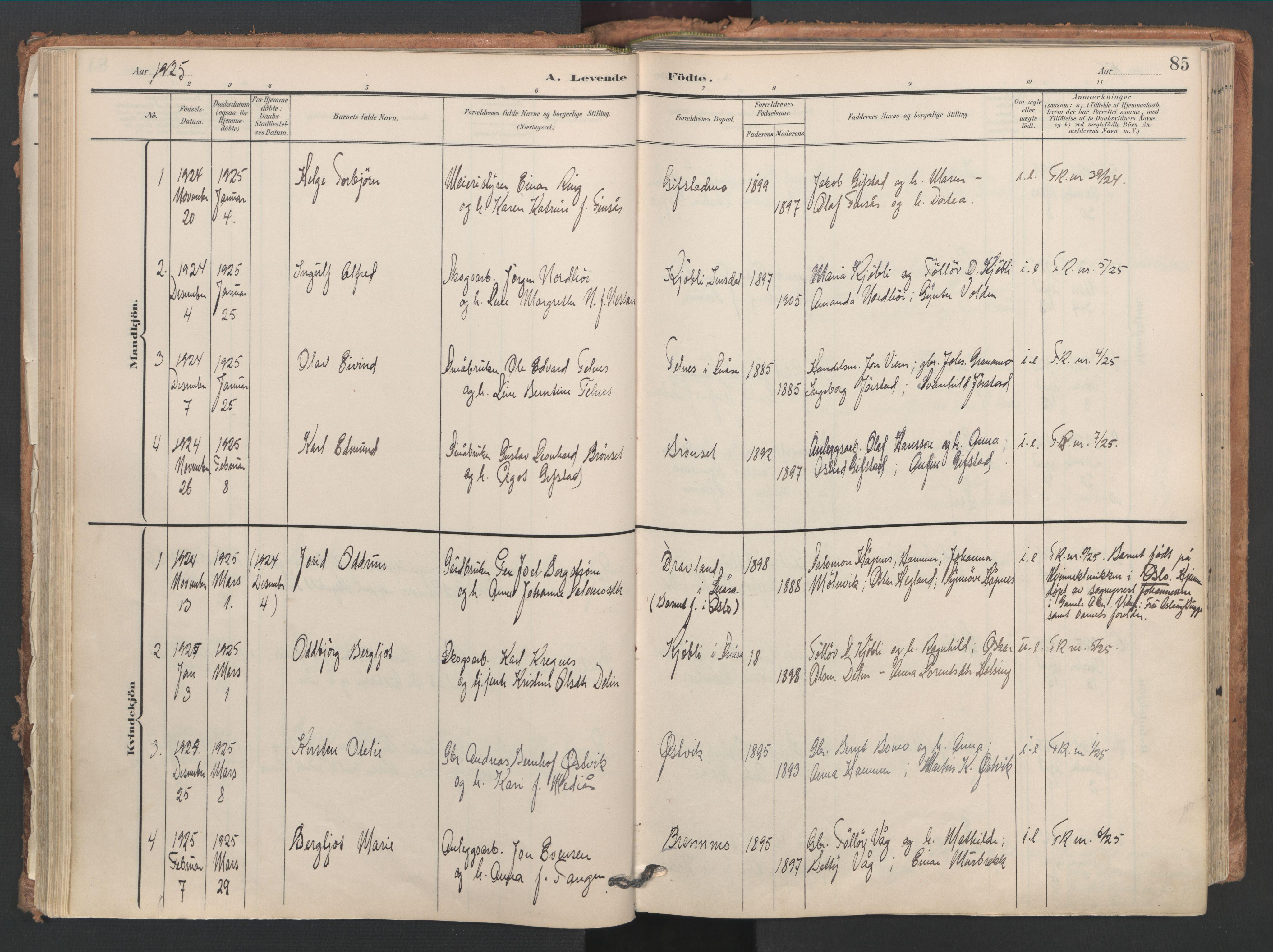 SAT, Ministerialprotokoller, klokkerbøker og fødselsregistre - Nord-Trøndelag, 749/L0477: Ministerialbok nr. 749A11, 1902-1927, s. 85
