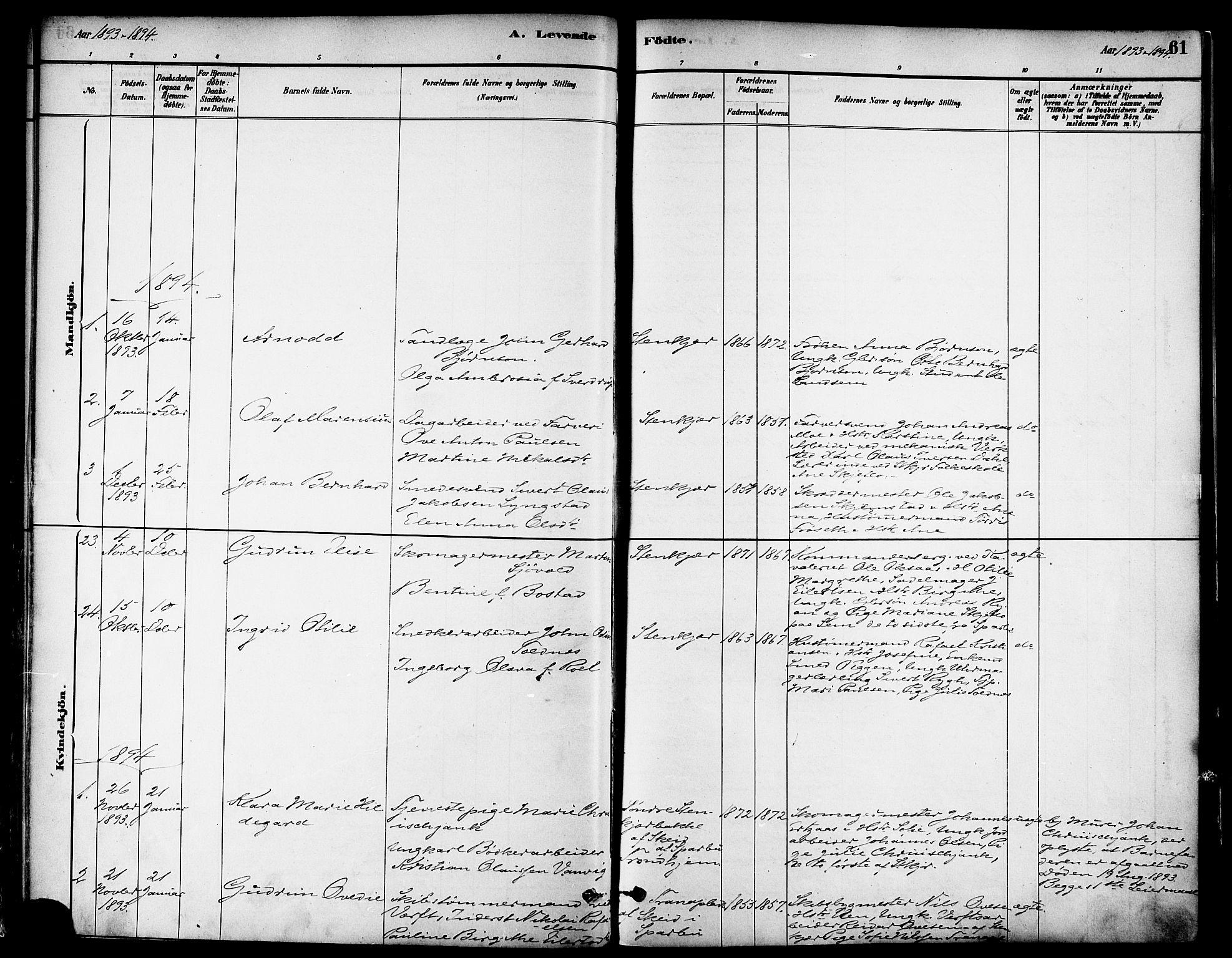 SAT, Ministerialprotokoller, klokkerbøker og fødselsregistre - Nord-Trøndelag, 739/L0371: Ministerialbok nr. 739A03, 1881-1895, s. 61