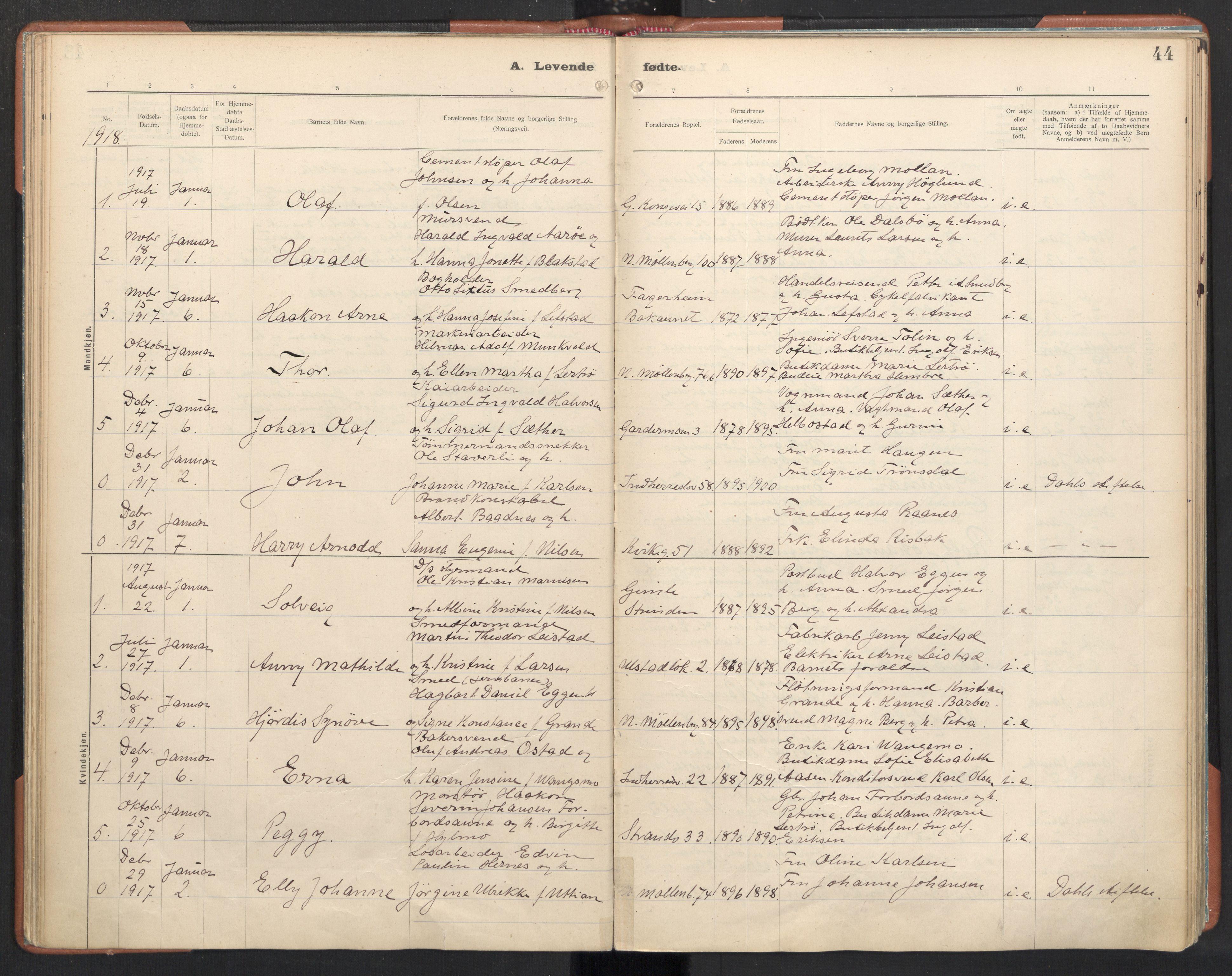 SAT, Ministerialprotokoller, klokkerbøker og fødselsregistre - Sør-Trøndelag, 605/L0246: Ministerialbok nr. 605A08, 1916-1920, s. 44