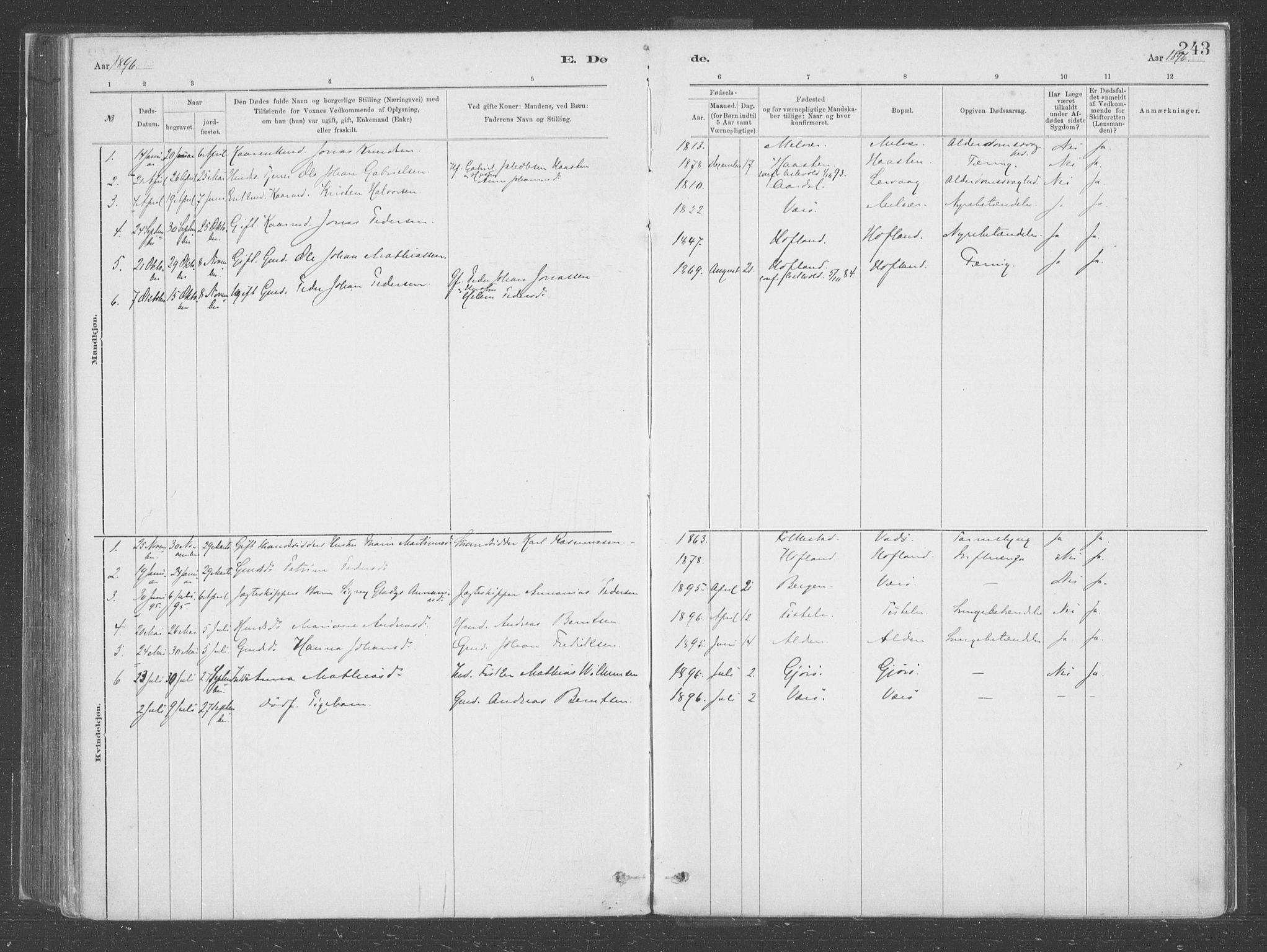 SAB, Askvoll Sokneprestembete, Ministerialbok nr. C  1, 1879-1922, s. 243