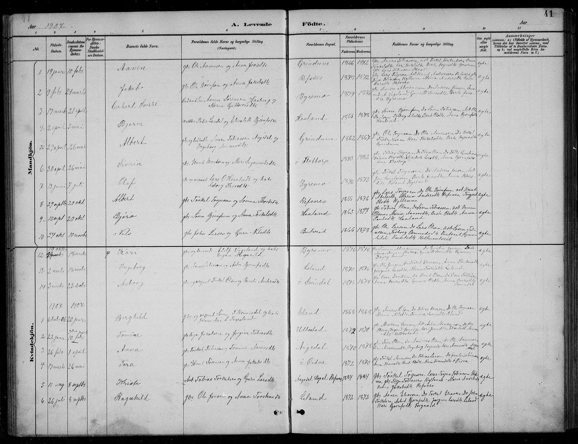 SAK, Bjelland sokneprestkontor, F/Fb/Fbc/L0003: Klokkerbok nr. B 3, 1887-1924, s. 41