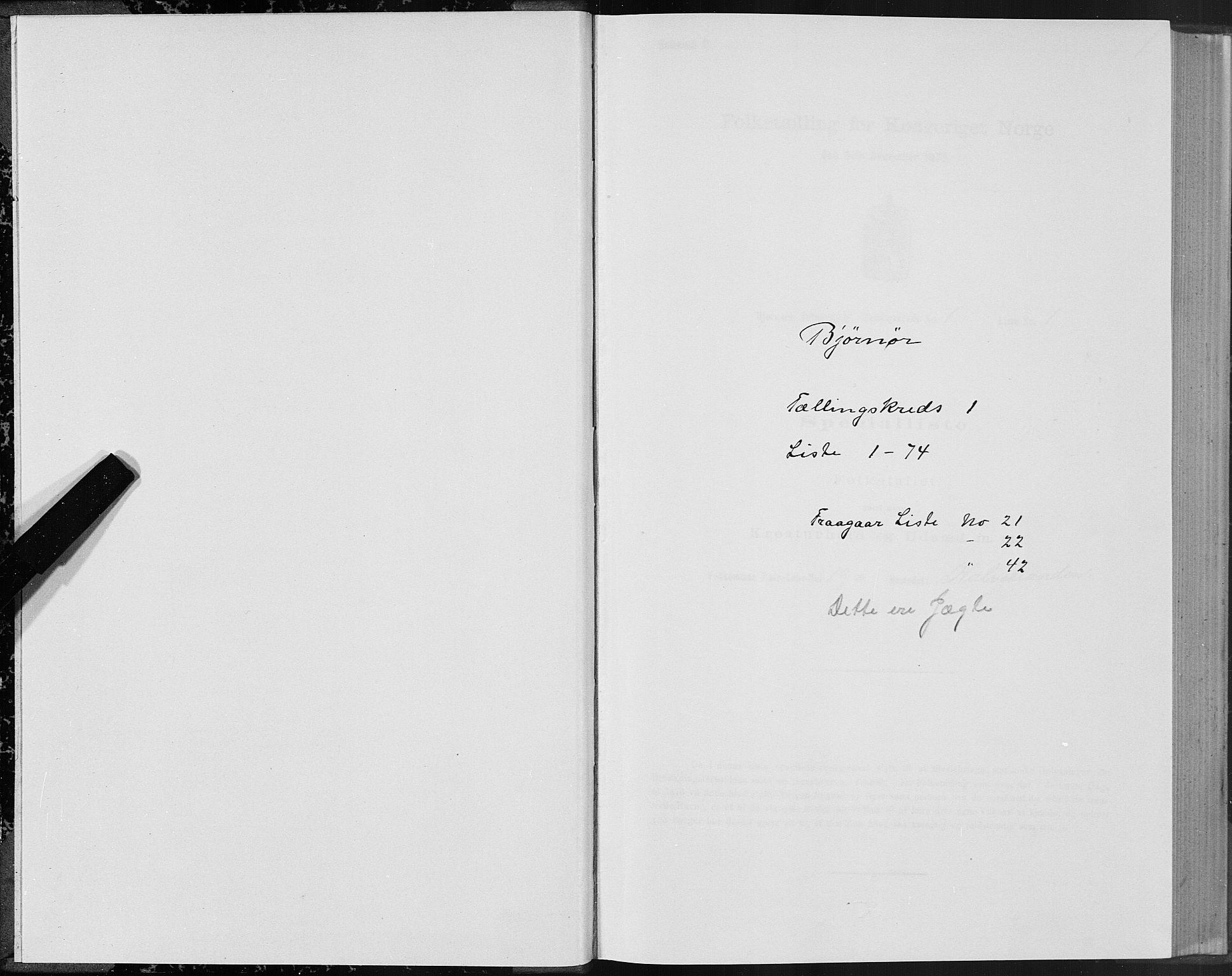SAT, Folketelling 1875 for 1632P Bjørnør prestegjeld, 1875