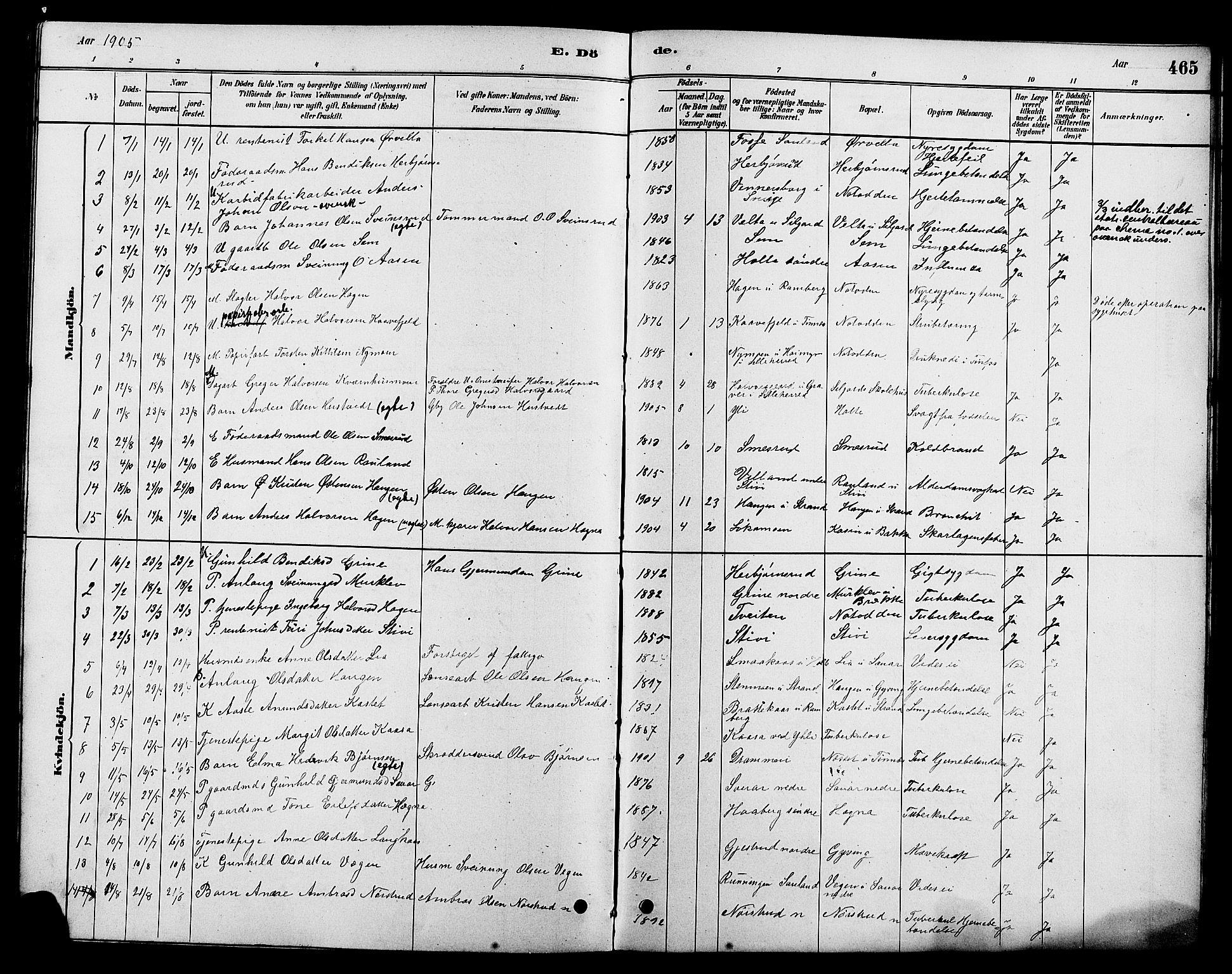 SAKO, Heddal kirkebøker, G/Ga/L0002: Klokkerbok nr. I 2, 1879-1908, s. 465