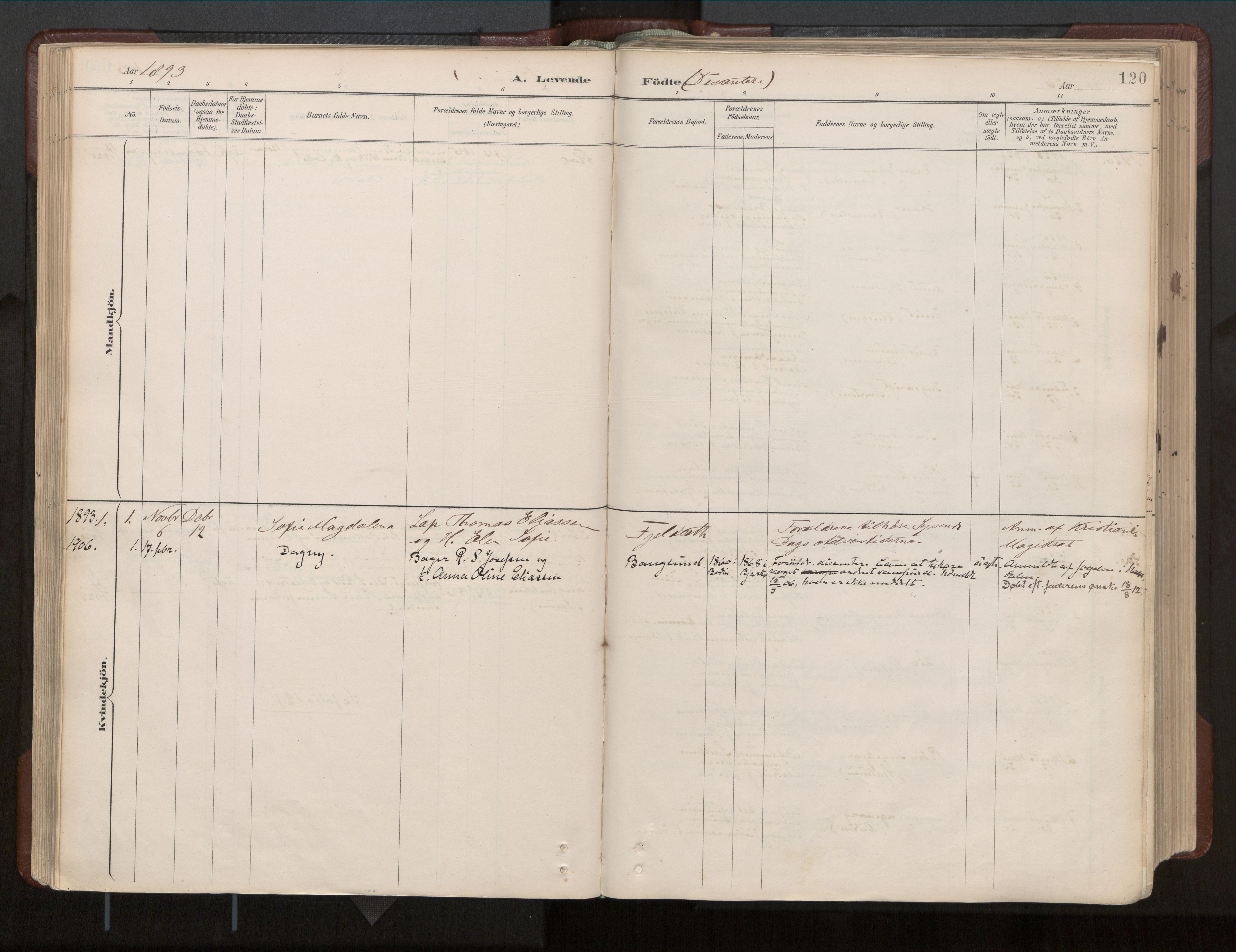 SAT, Ministerialprotokoller, klokkerbøker og fødselsregistre - Nord-Trøndelag, 770/L0589: Ministerialbok nr. 770A03, 1887-1929, s. 120