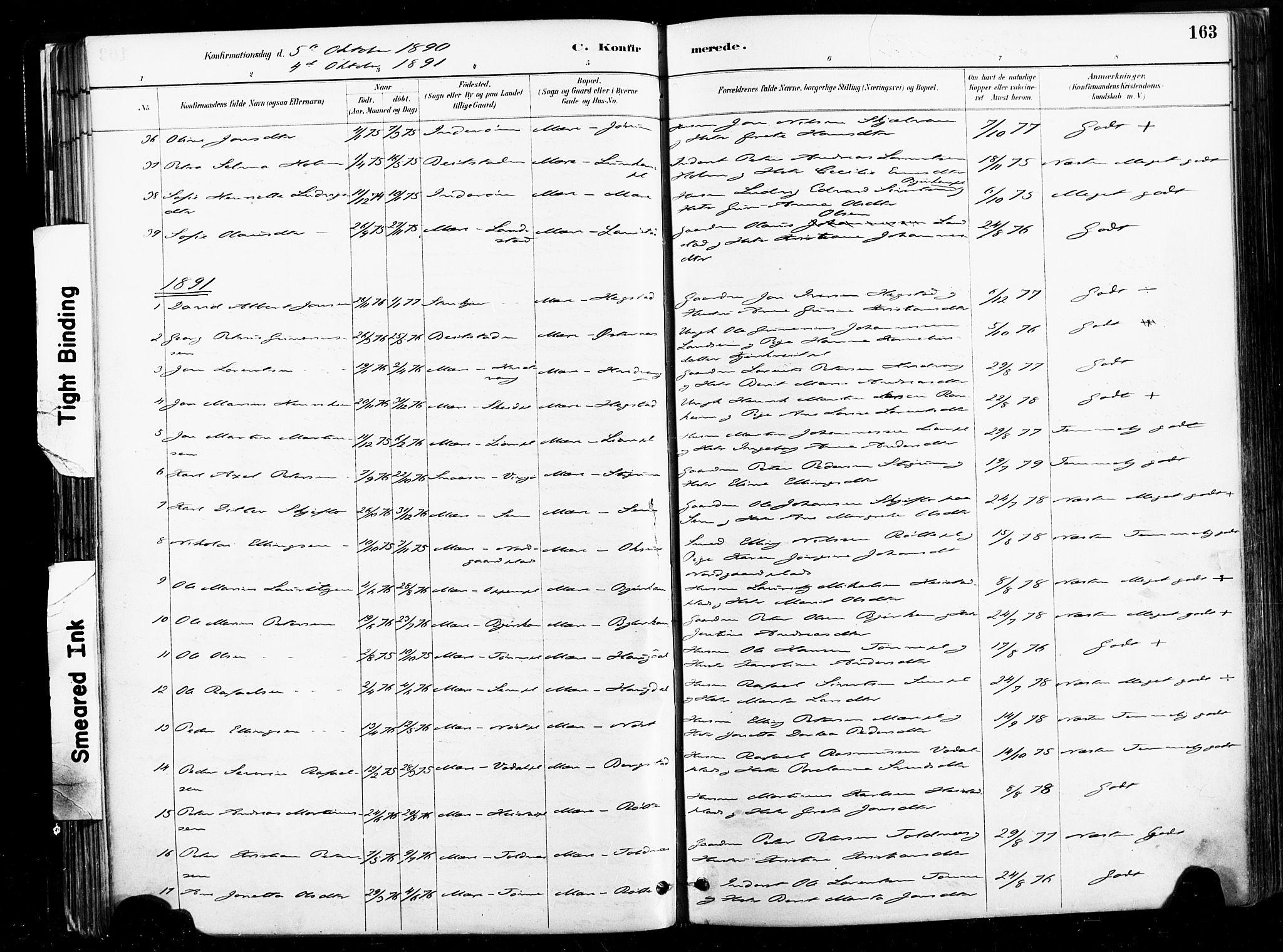 SAT, Ministerialprotokoller, klokkerbøker og fødselsregistre - Nord-Trøndelag, 735/L0351: Ministerialbok nr. 735A10, 1884-1908, s. 163