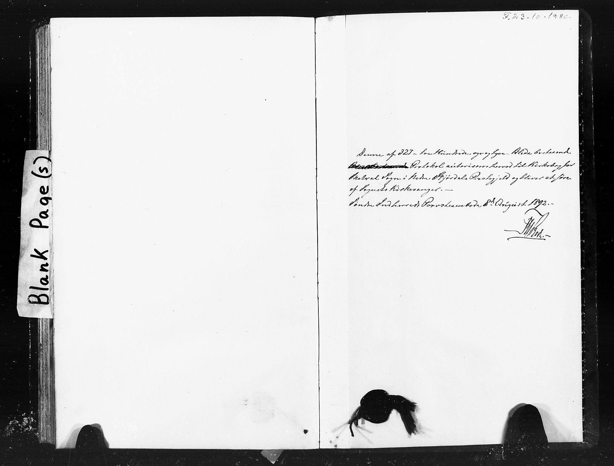 SAT, Ministerialprotokoller, klokkerbøker og fødselsregistre - Nord-Trøndelag, 712/L0103: Klokkerbok nr. 712C01, 1878-1917, s. 317