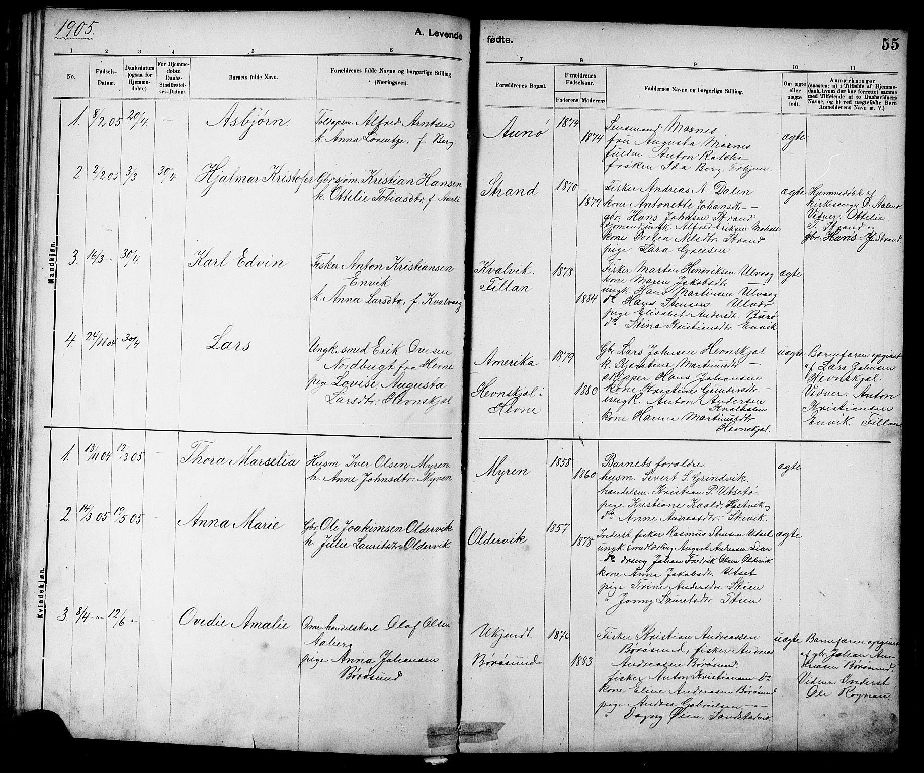 SAT, Ministerialprotokoller, klokkerbøker og fødselsregistre - Sør-Trøndelag, 639/L0573: Klokkerbok nr. 639C01, 1890-1905, s. 55