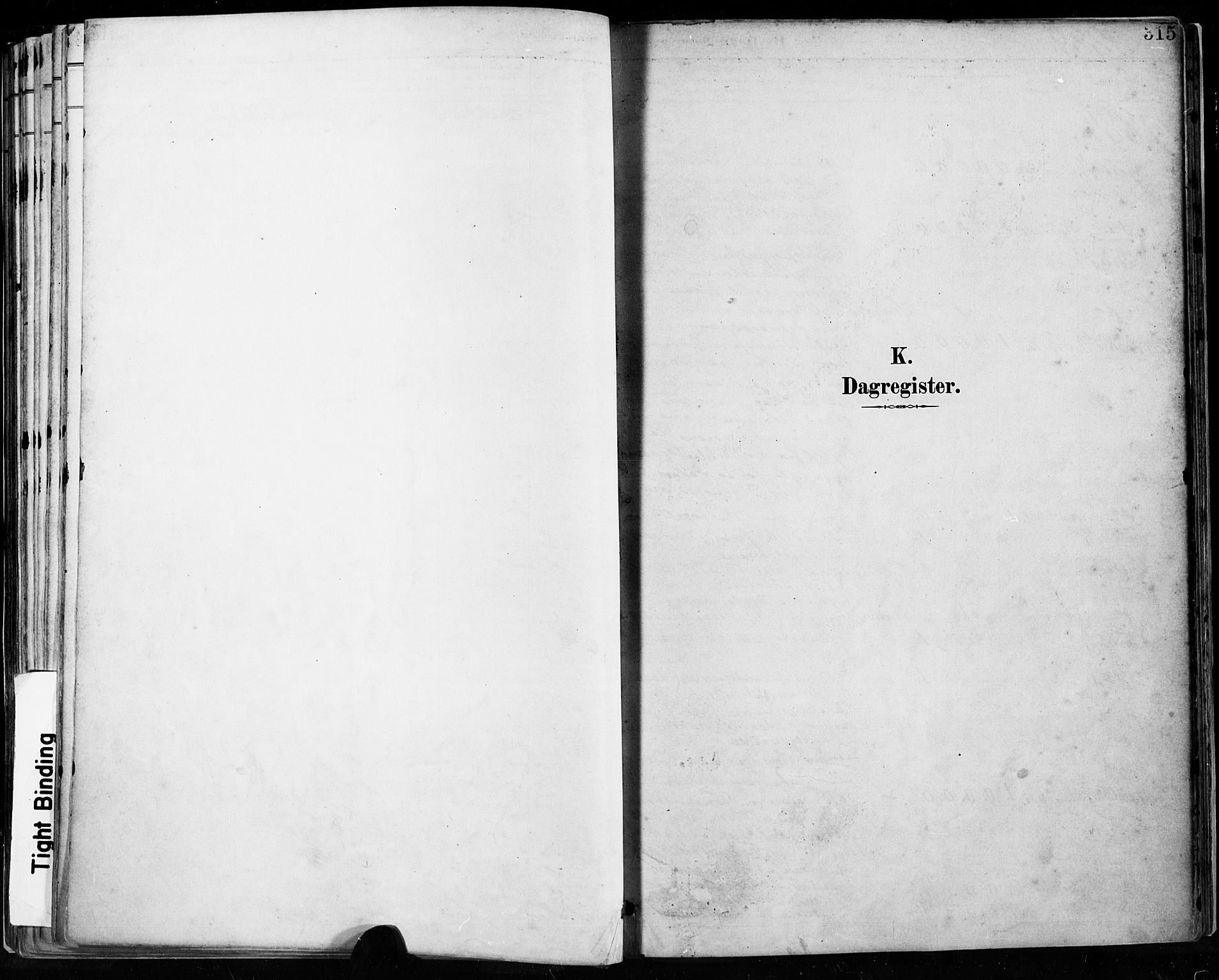 SAST, Høyland sokneprestkontor, 30BA/L0013: Ministerialbok nr. A 13.2, 1889-1898, s. 315