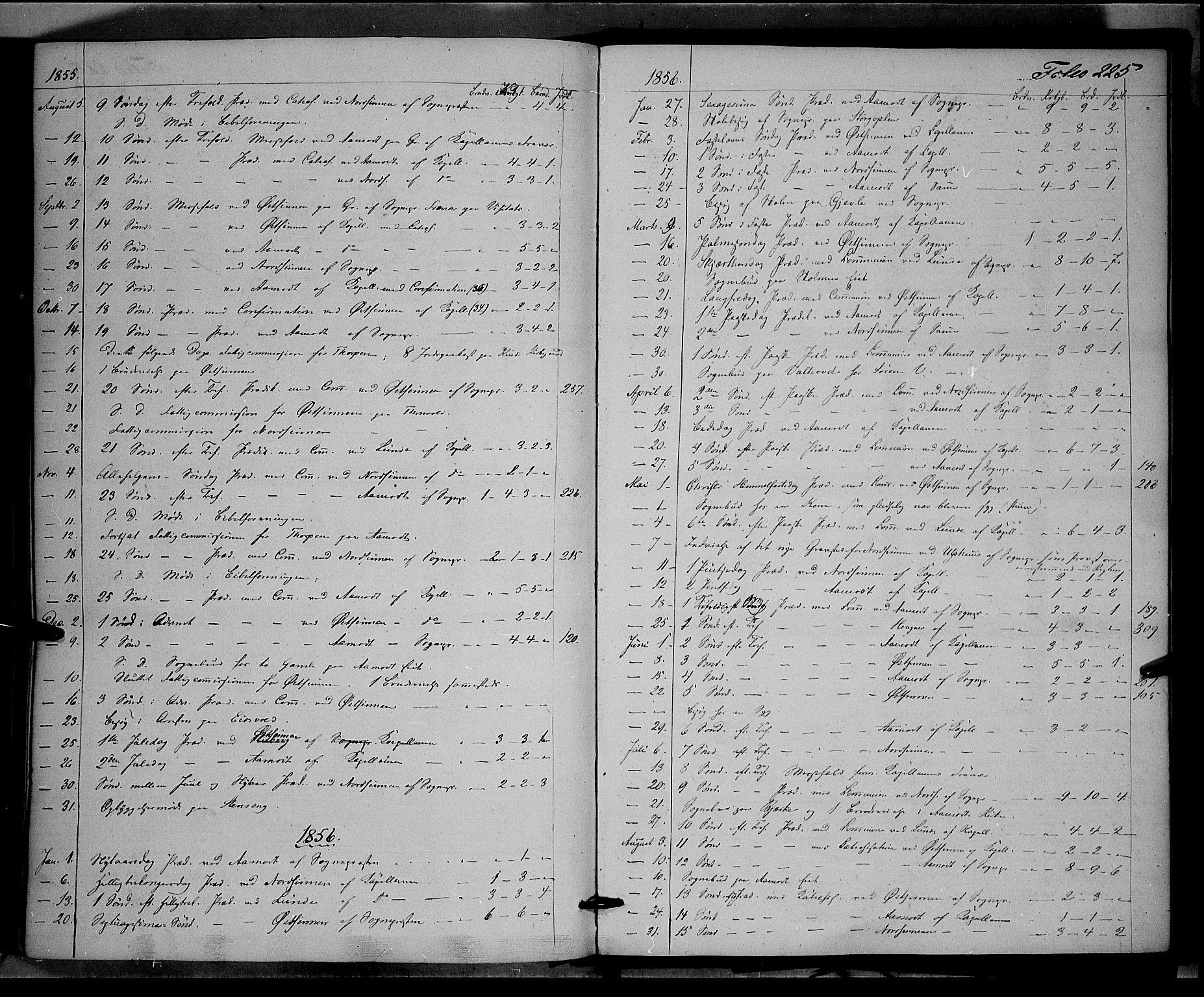 SAH, Land prestekontor, Ministerialbok nr. 10, 1847-1859, s. 225