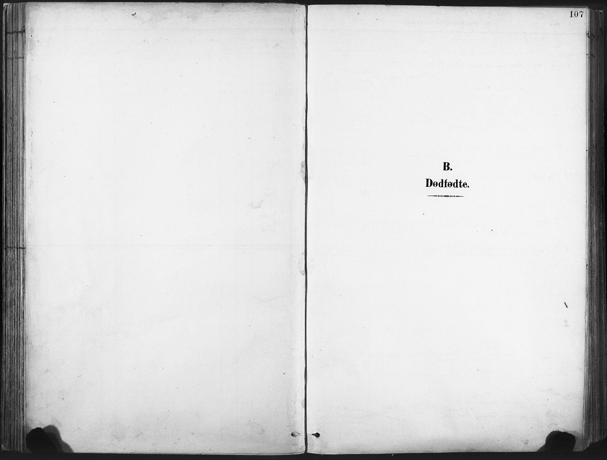 SAT, Ministerialprotokoller, klokkerbøker og fødselsregistre - Nord-Trøndelag, 717/L0162: Ministerialbok nr. 717A12, 1898-1923, s. 107