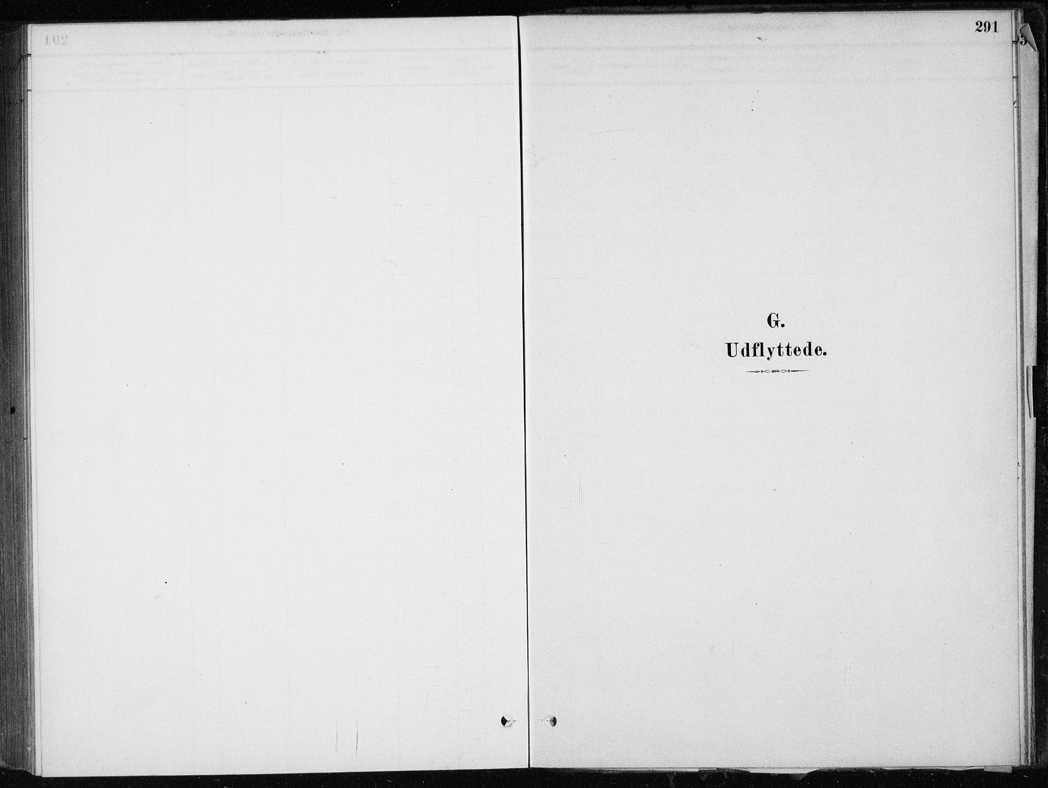 SAB, Skånevik Sokneprestembete, H/Haa: Ministerialbok nr. E  1, 1879-1901, s. 291