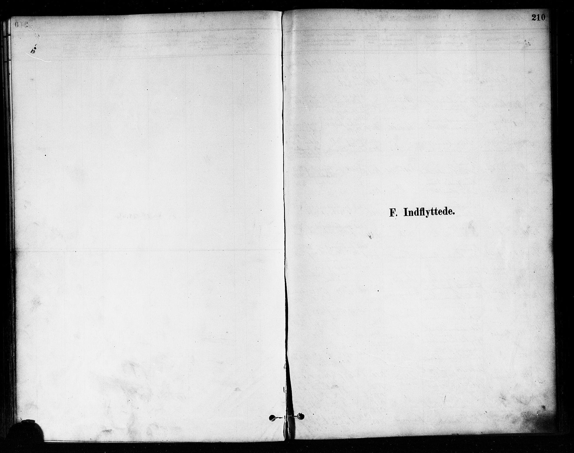 SAO, Askim prestekontor Kirkebøker, F/Fa/L0007: Ministerialbok nr. 7, 1882-1897, s. 210