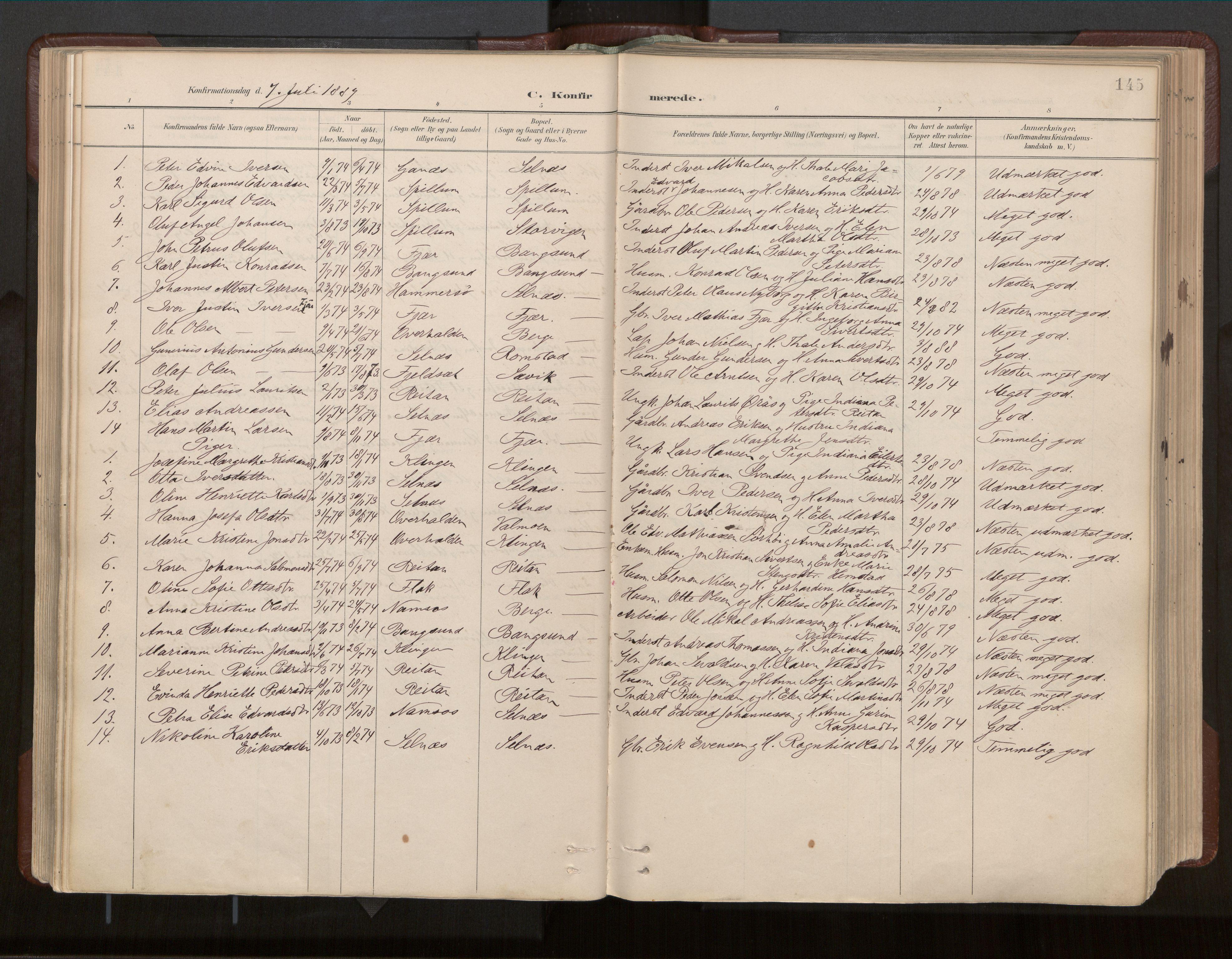 SAT, Ministerialprotokoller, klokkerbøker og fødselsregistre - Nord-Trøndelag, 770/L0589: Ministerialbok nr. 770A03, 1887-1929, s. 145