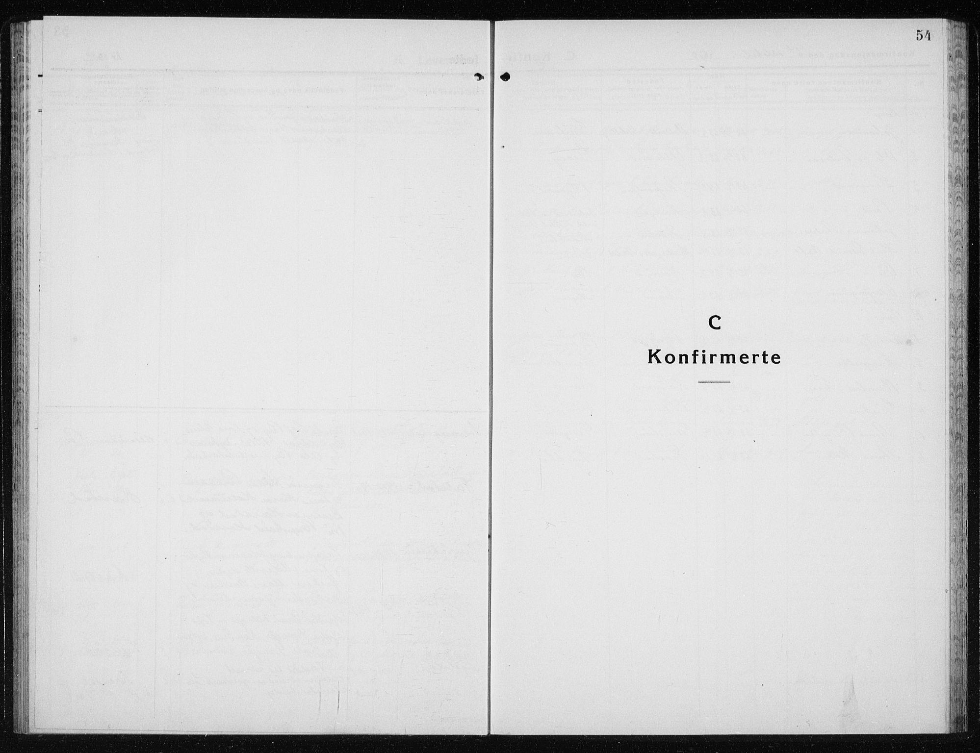 SAT, Ministerialprotokoller, klokkerbøker og fødselsregistre - Nord-Trøndelag, 719/L0180: Klokkerbok nr. 719C01, 1878-1940, s. 54