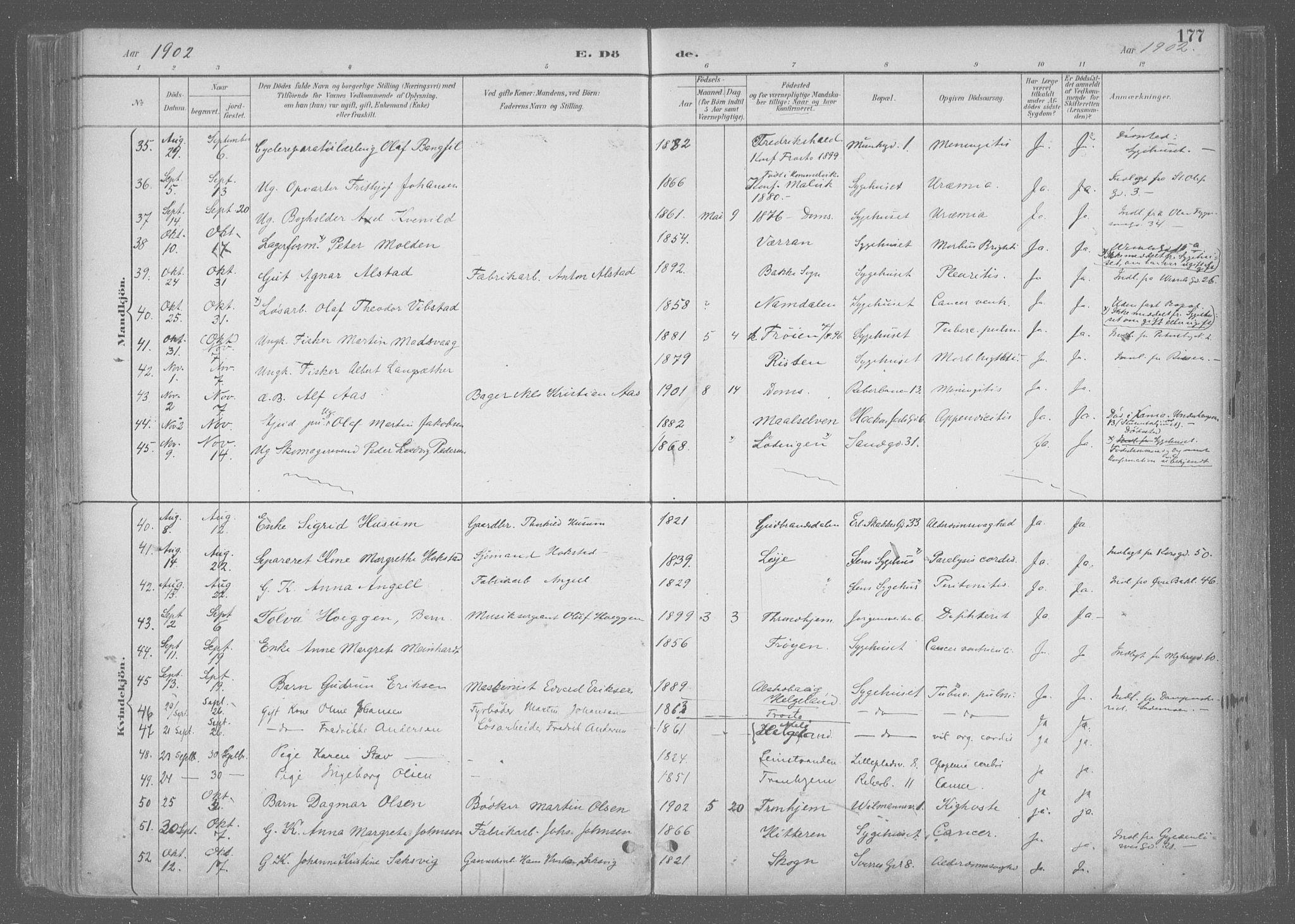 SAT, Ministerialprotokoller, klokkerbøker og fødselsregistre - Sør-Trøndelag, 601/L0064: Ministerialbok nr. 601A31, 1891-1911, s. 177