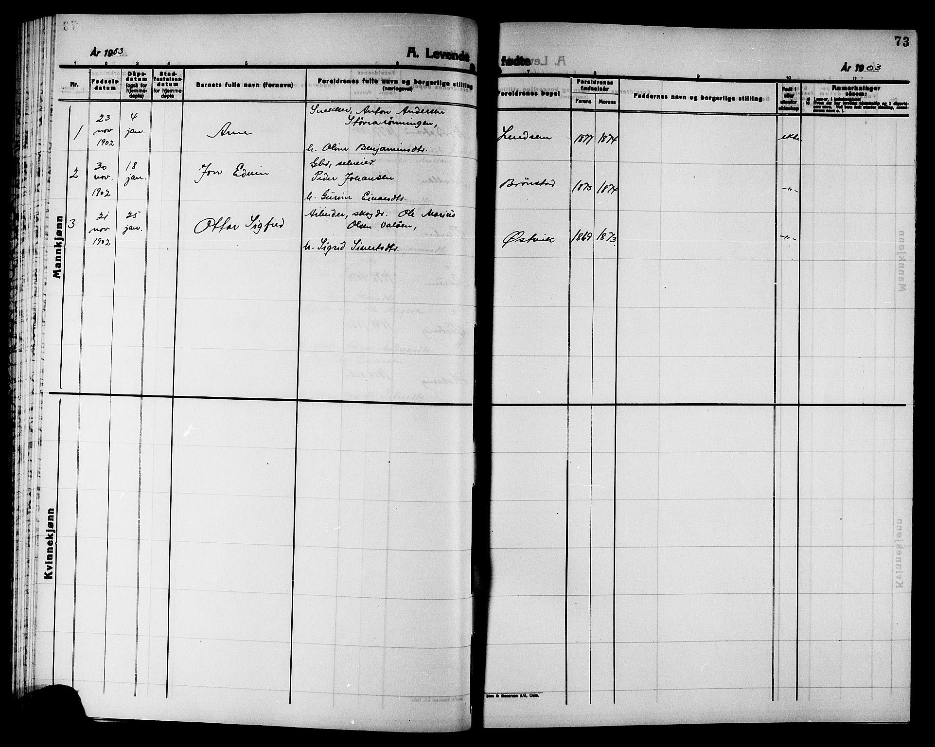 SAT, Ministerialprotokoller, klokkerbøker og fødselsregistre - Nord-Trøndelag, 749/L0487: Ministerialbok nr. 749D03, 1887-1902, s. 73