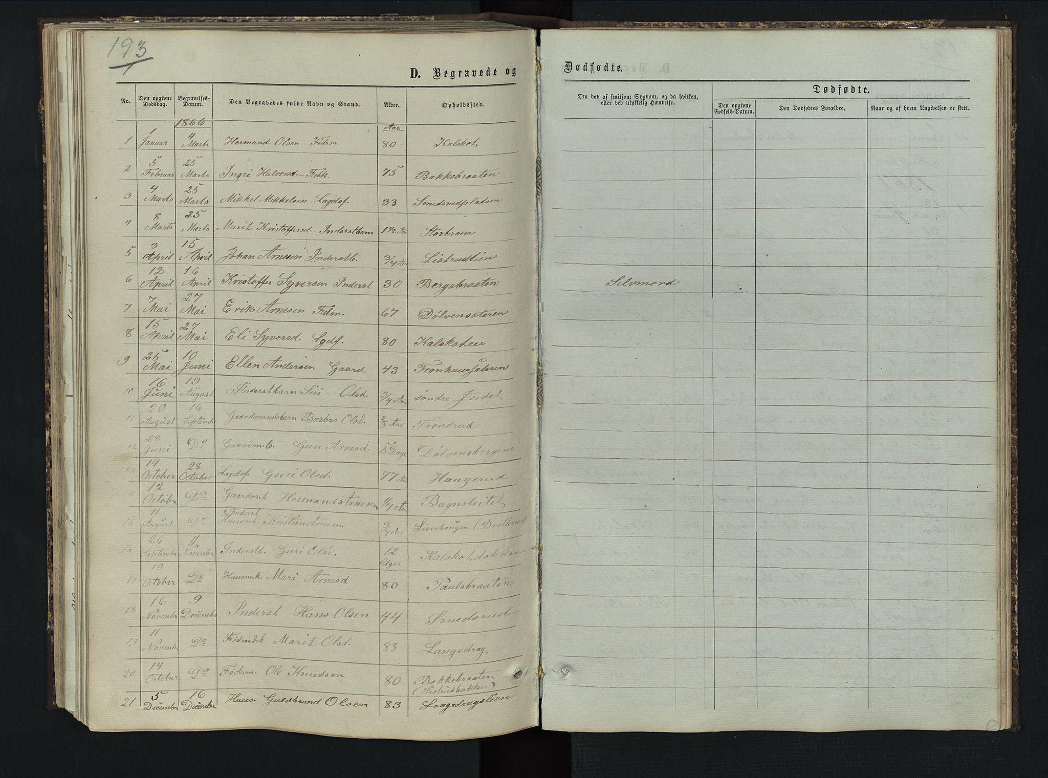 SAH, Sør-Aurdal prestekontor, Klokkerbok nr. 5, 1866-1893, s. 193