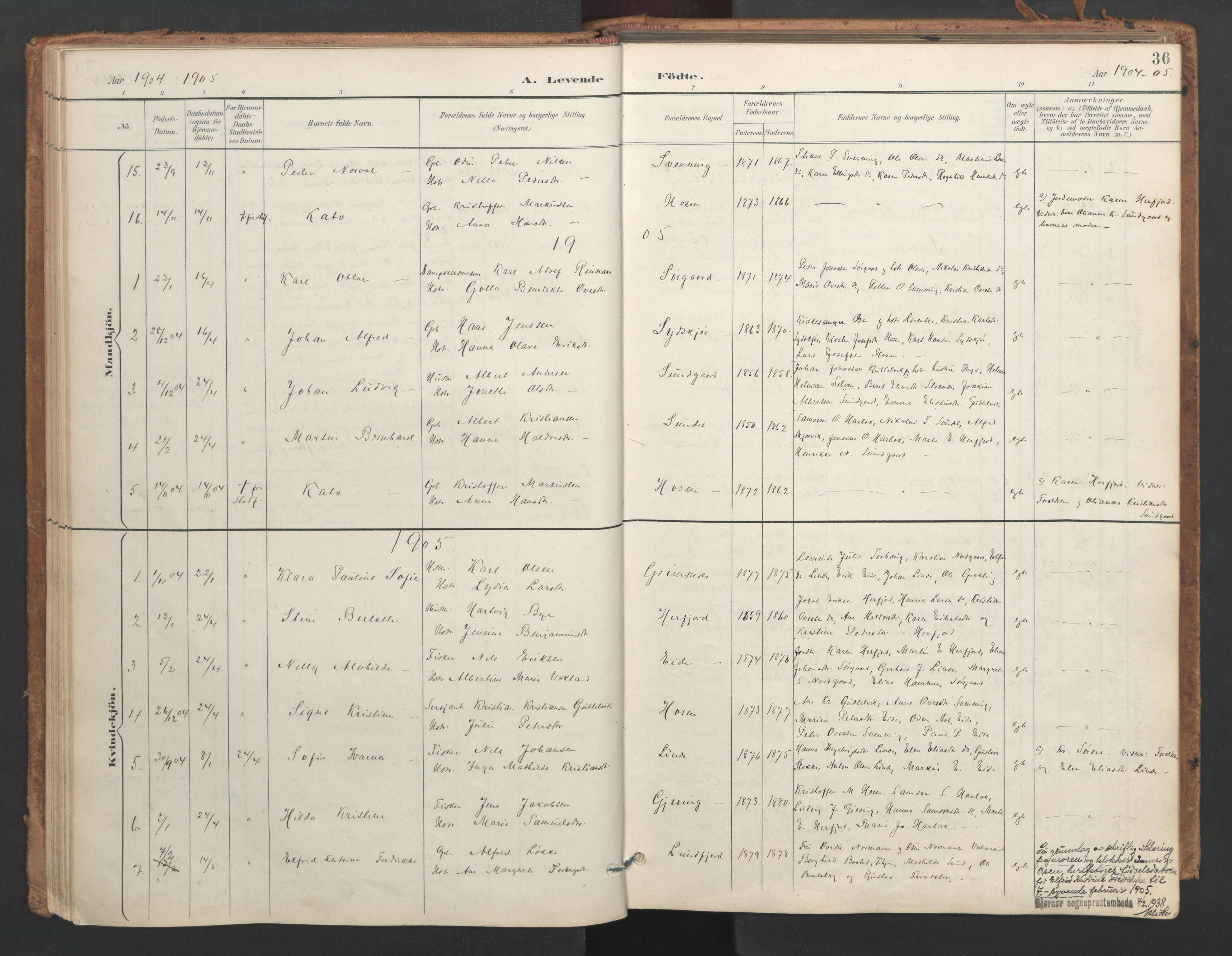SAT, Ministerialprotokoller, klokkerbøker og fødselsregistre - Sør-Trøndelag, 656/L0693: Ministerialbok nr. 656A02, 1894-1913, s. 36