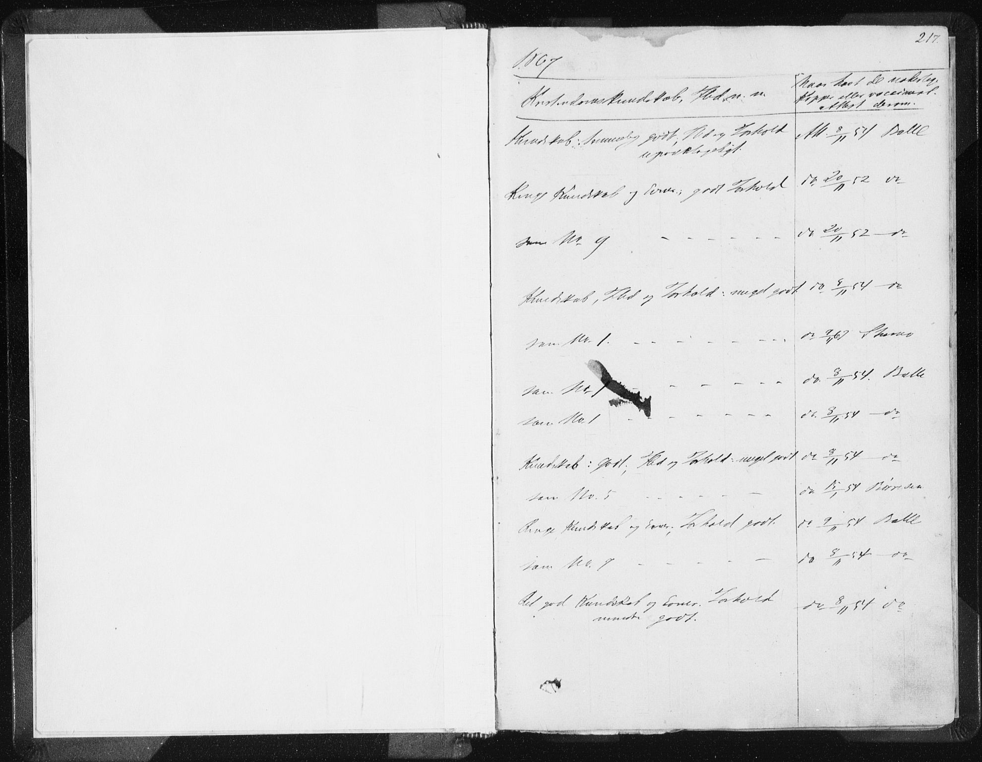 SAST, Vikedal sokneprestkontor, IV: Ministerialbok nr. A 6.2, 1851-1867, s. 217
