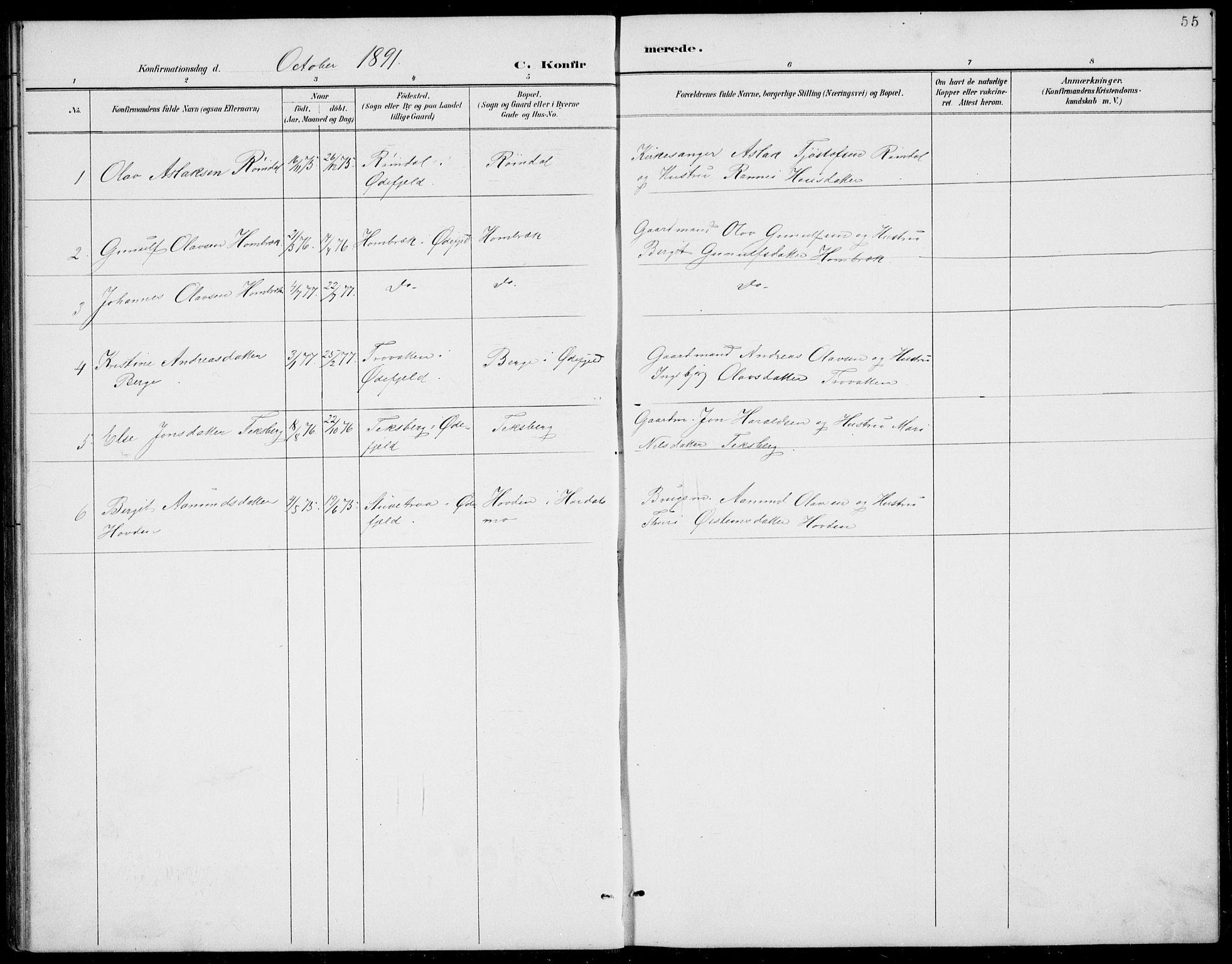 SAKO, Rauland kirkebøker, G/Gb/L0002: Klokkerbok nr. II 2, 1887-1937, s. 55