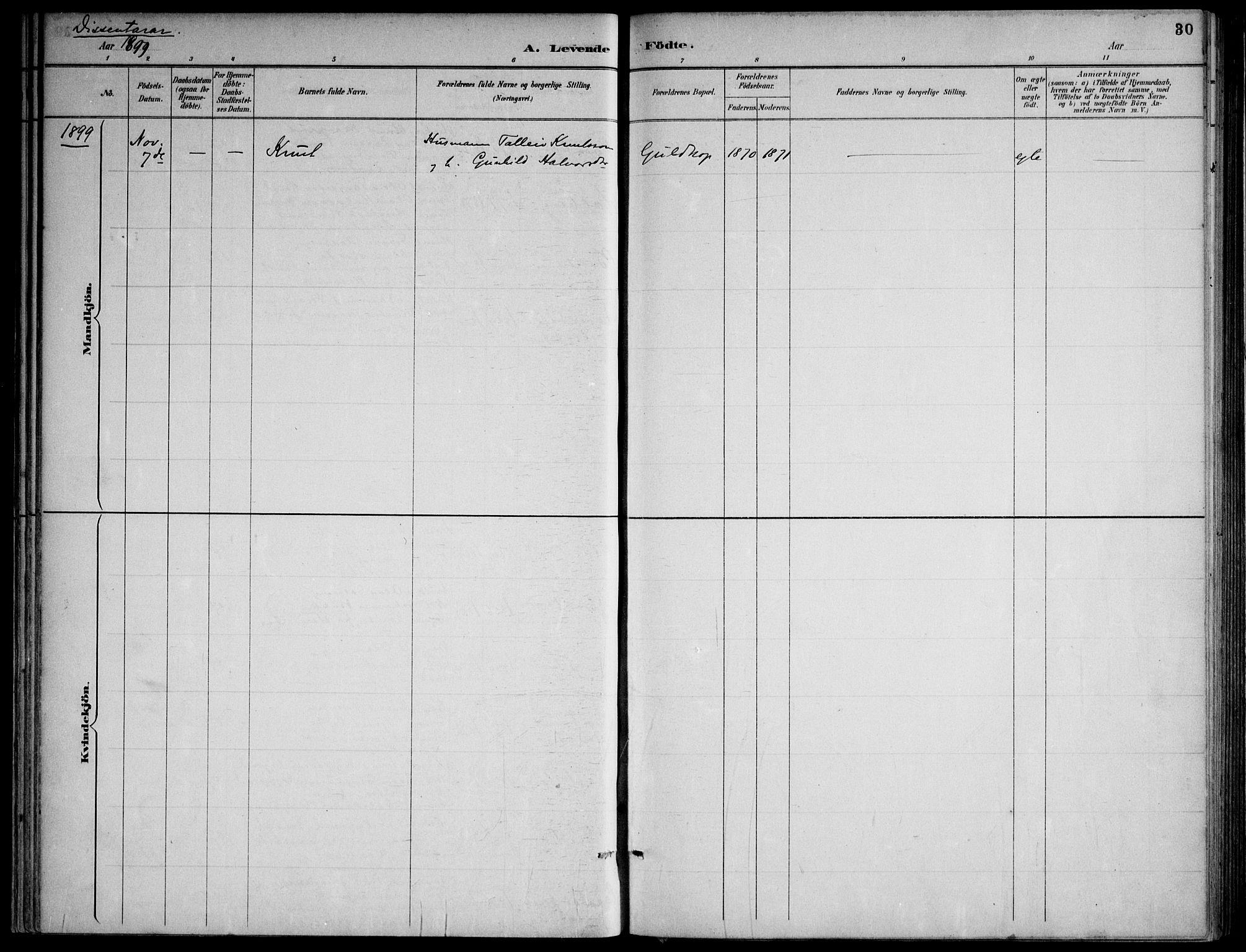SAKO, Lårdal kirkebøker, F/Fa/L0007: Ministerialbok nr. I 7, 1887-1906, s. 30