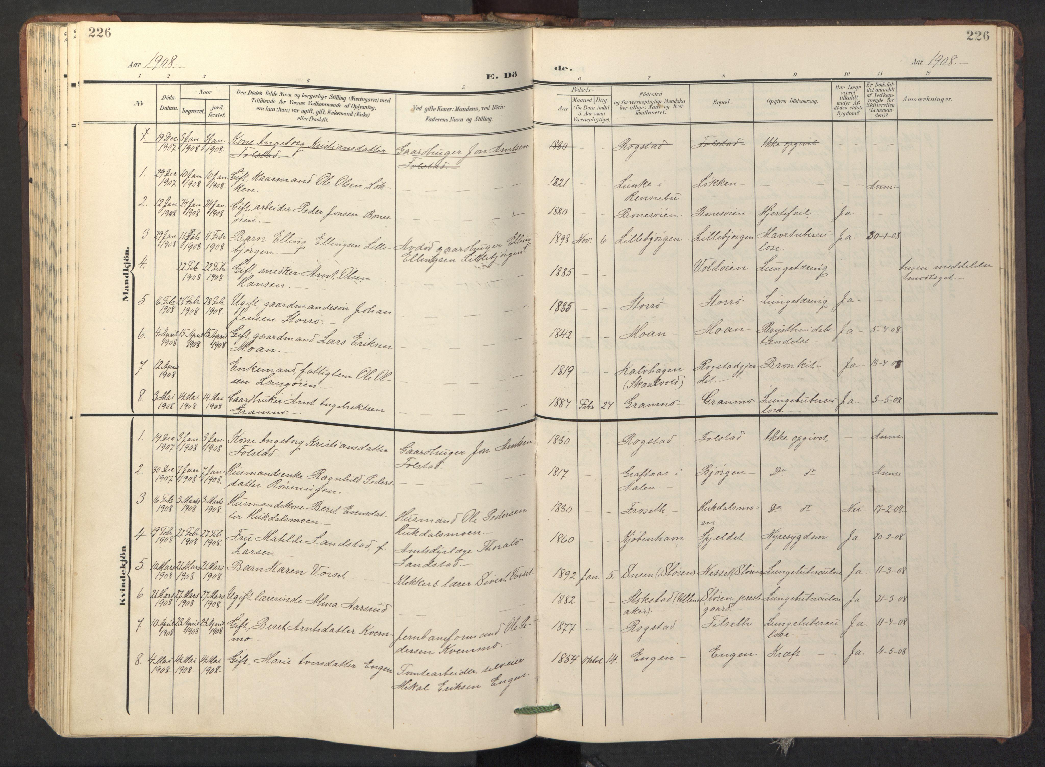 SAT, Ministerialprotokoller, klokkerbøker og fødselsregistre - Sør-Trøndelag, 687/L1019: Klokkerbok nr. 687C03, 1904-1931, s. 226