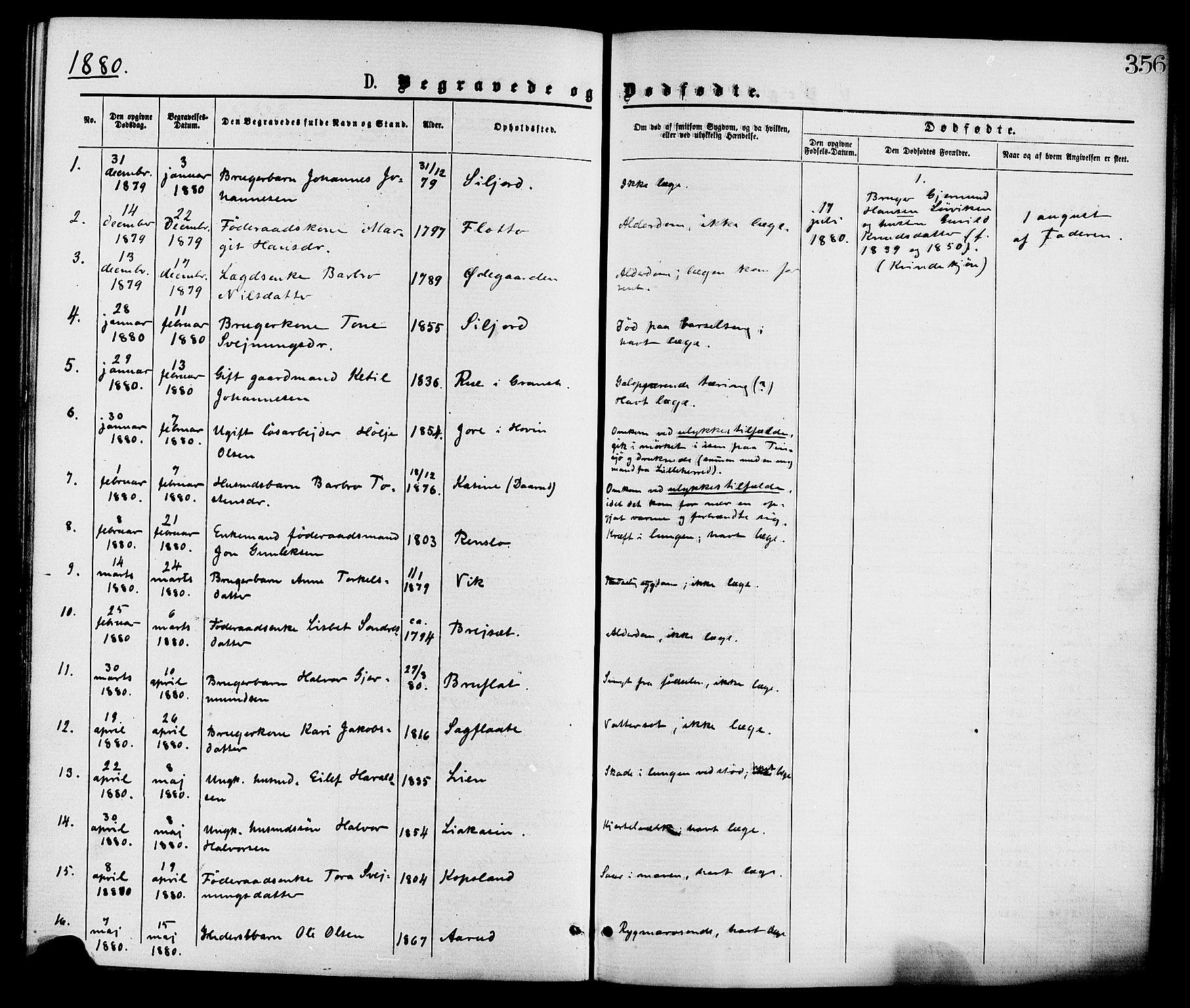 SAKO, Gransherad kirkebøker, F/Fa/L0004: Ministerialbok nr. I 4, 1871-1886, s. 356