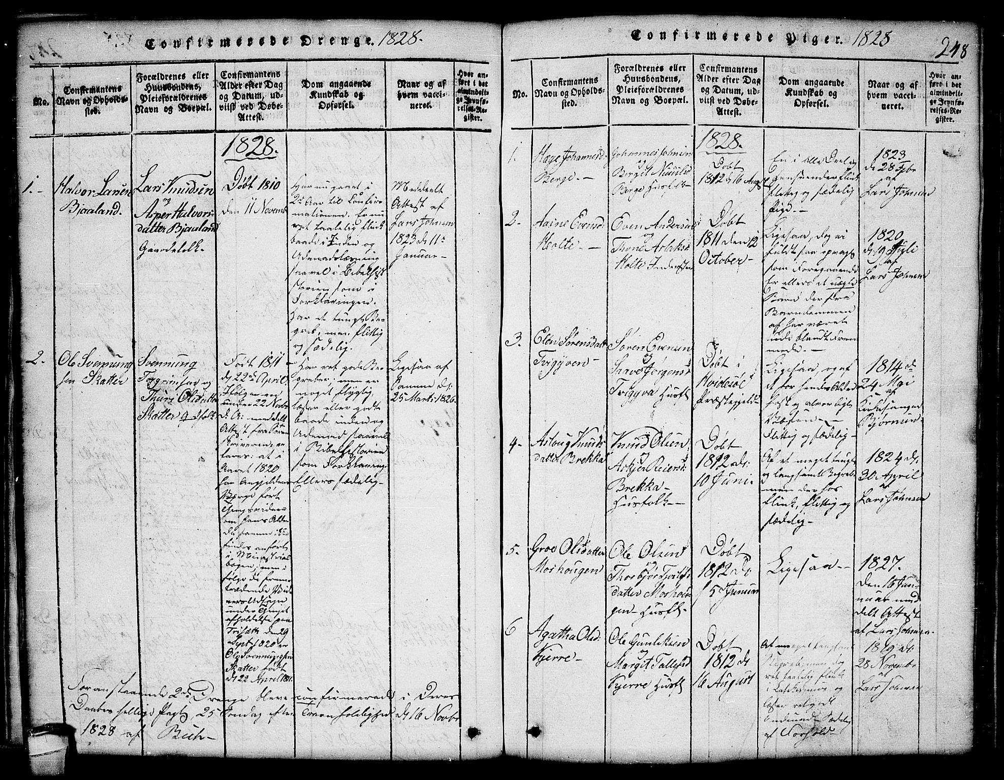 SAKO, Lårdal kirkebøker, G/Ga/L0001: Klokkerbok nr. I 1, 1815-1861, s. 248