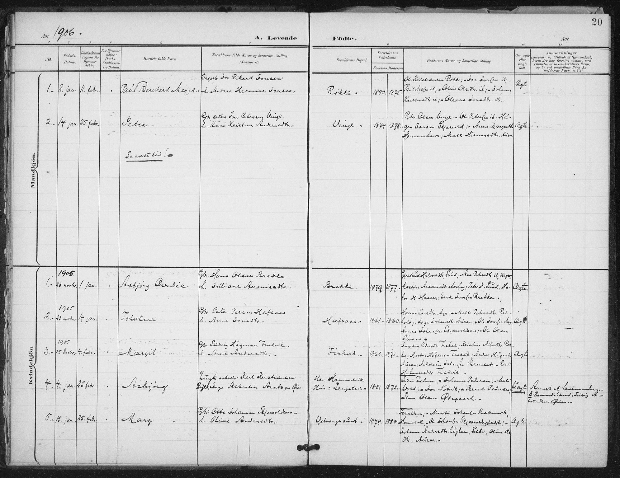 SAT, Ministerialprotokoller, klokkerbøker og fødselsregistre - Nord-Trøndelag, 712/L0101: Ministerialbok nr. 712A02, 1901-1916, s. 20