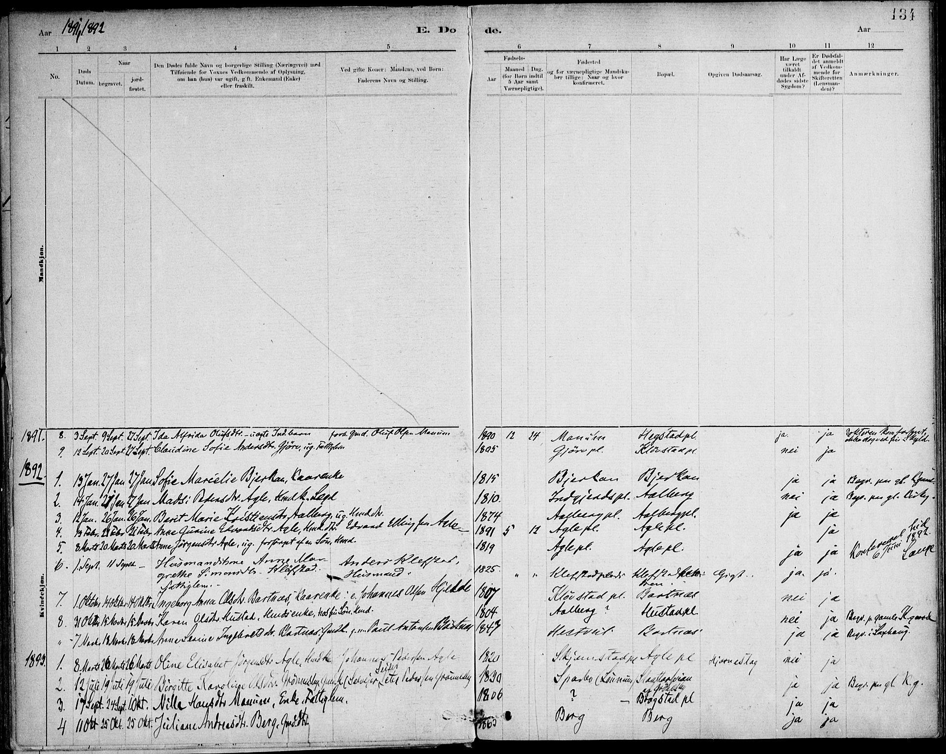 SAT, Ministerialprotokoller, klokkerbøker og fødselsregistre - Nord-Trøndelag, 732/L0316: Ministerialbok nr. 732A01, 1879-1921, s. 134