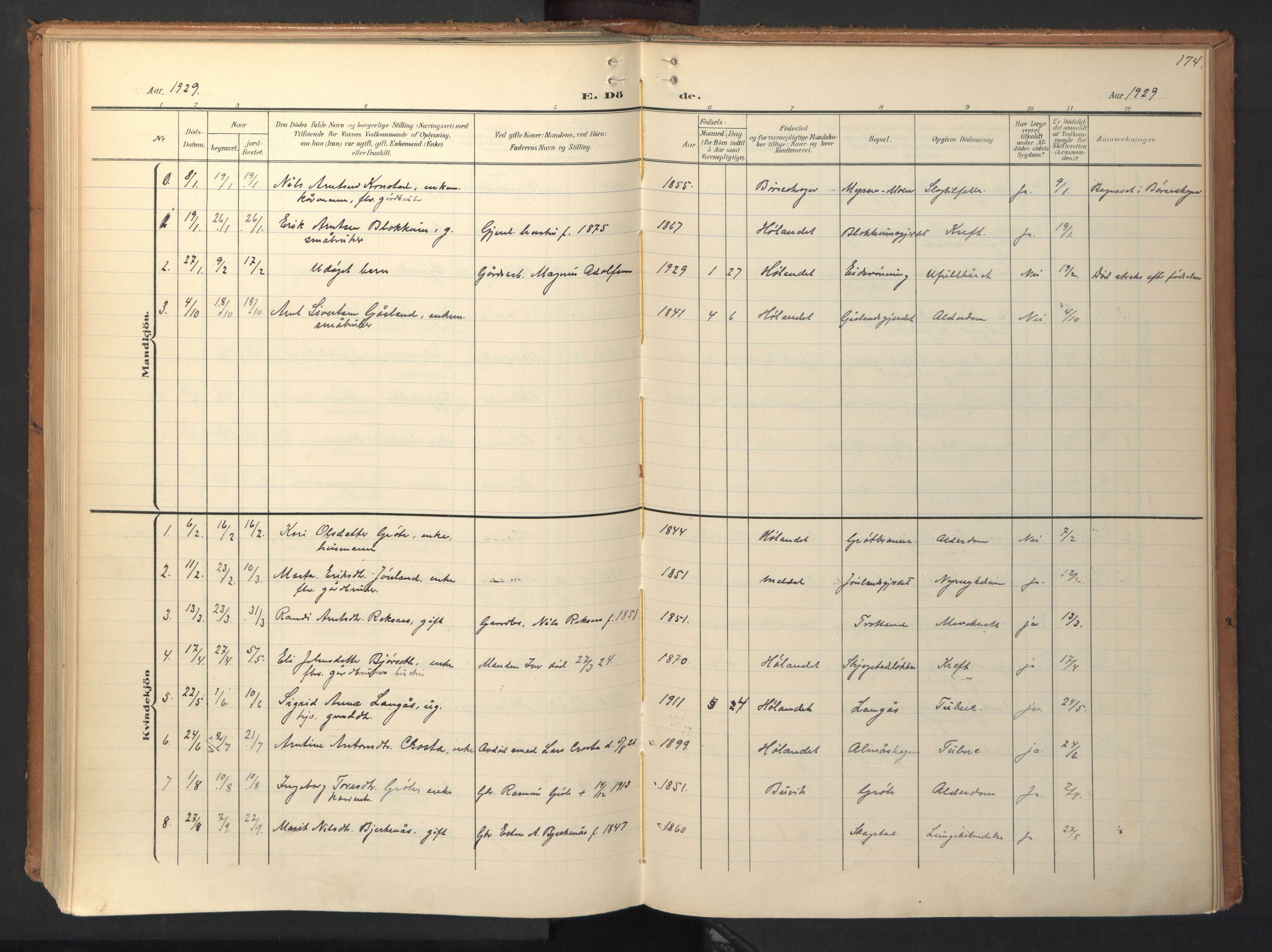 SAT, Ministerialprotokoller, klokkerbøker og fødselsregistre - Sør-Trøndelag, 694/L1128: Ministerialbok nr. 694A02, 1906-1931, s. 174