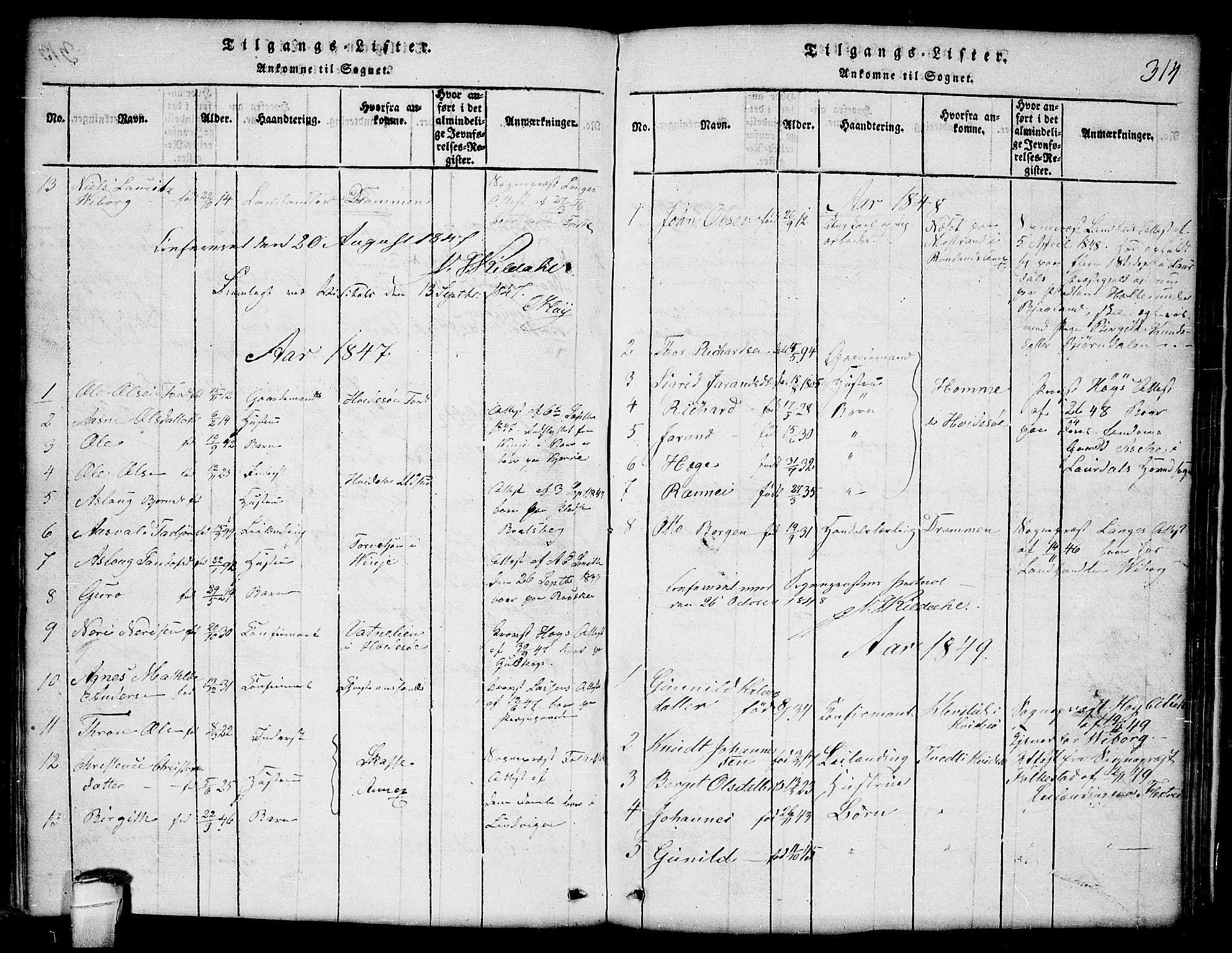 SAKO, Lårdal kirkebøker, G/Ga/L0001: Klokkerbok nr. I 1, 1815-1861, s. 314