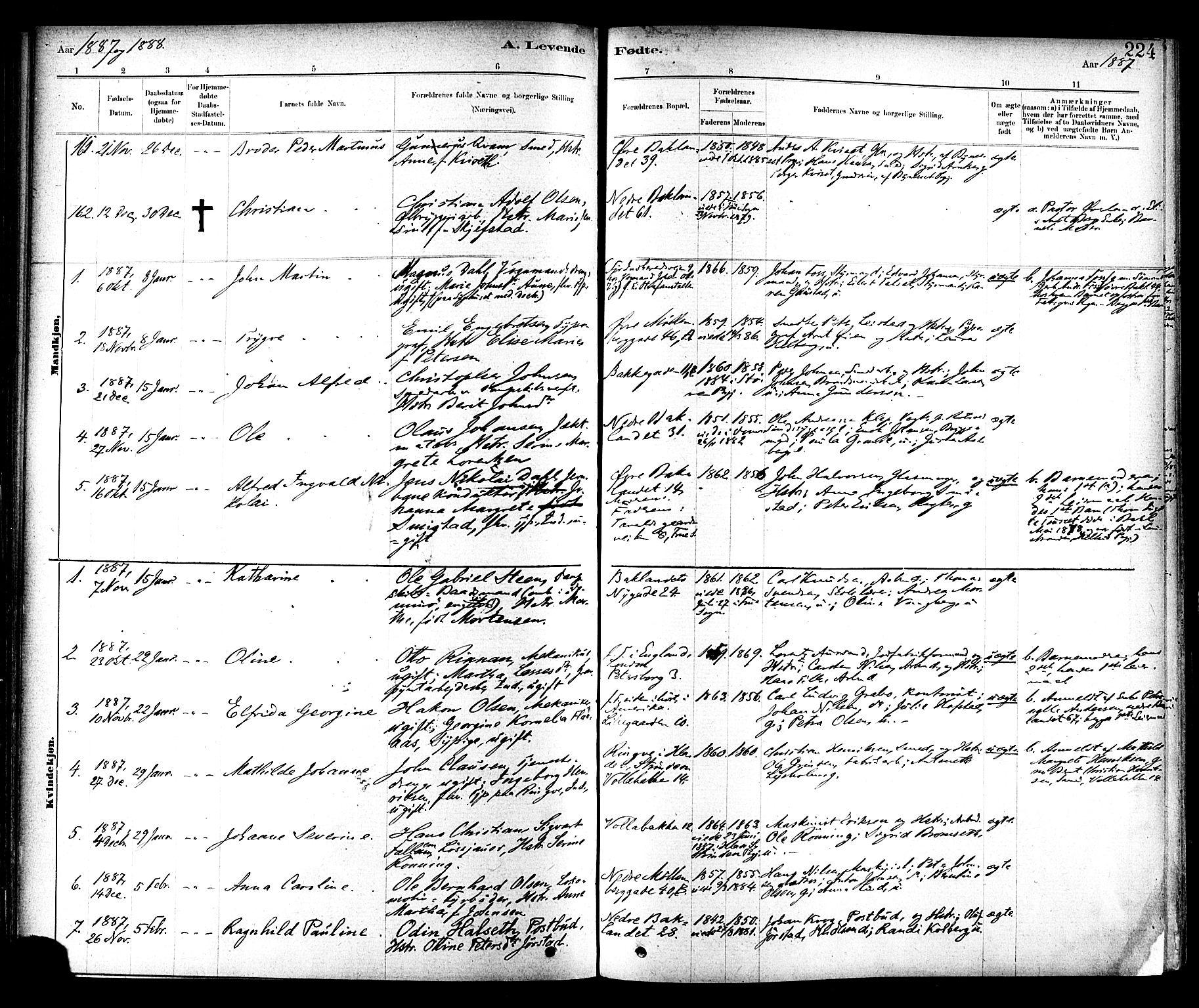 SAT, Ministerialprotokoller, klokkerbøker og fødselsregistre - Sør-Trøndelag, 604/L0188: Ministerialbok nr. 604A09, 1878-1892, s. 224
